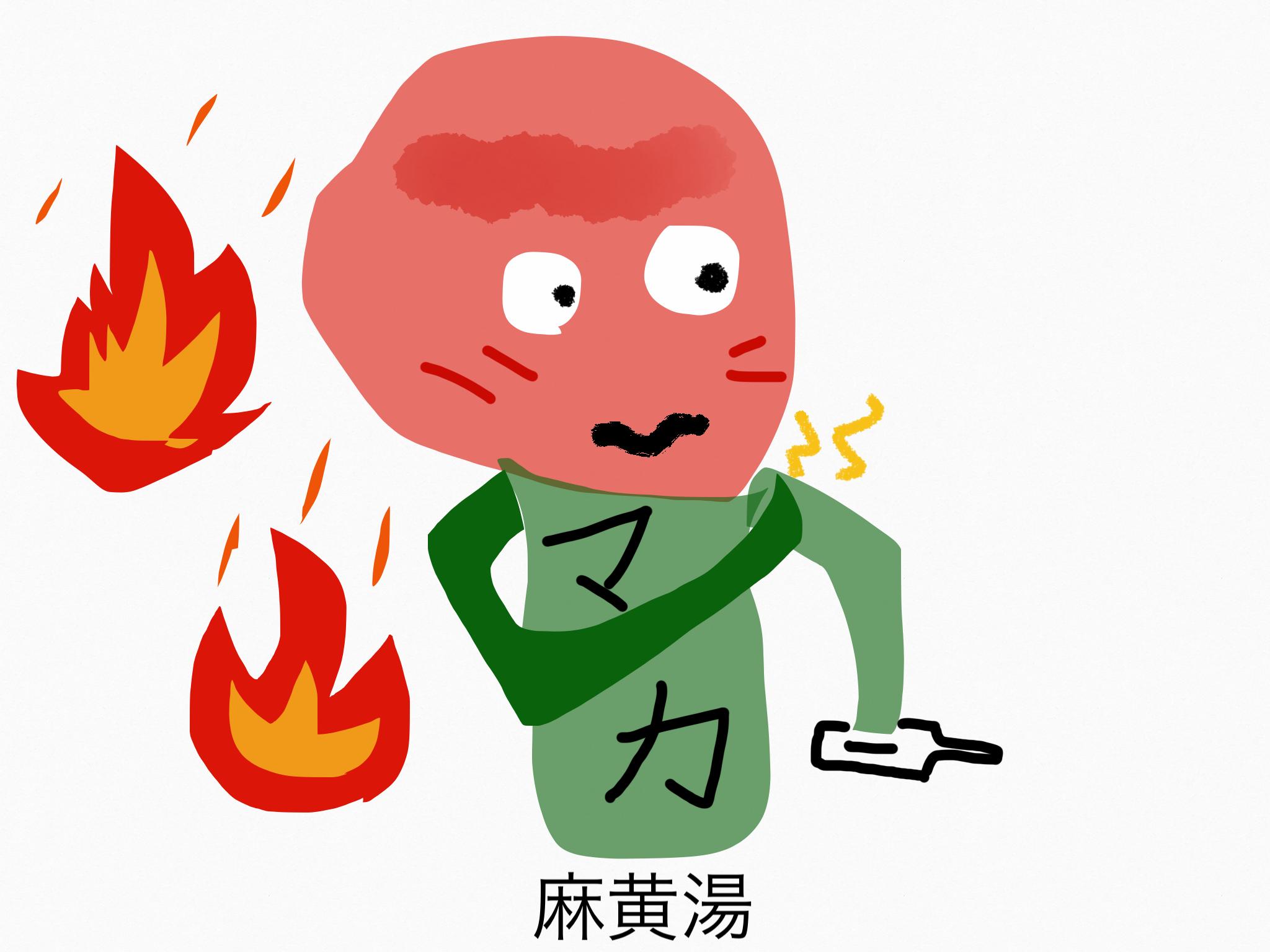 麻黄湯(まおうとう)[かぜ]【漢方の覚え方】