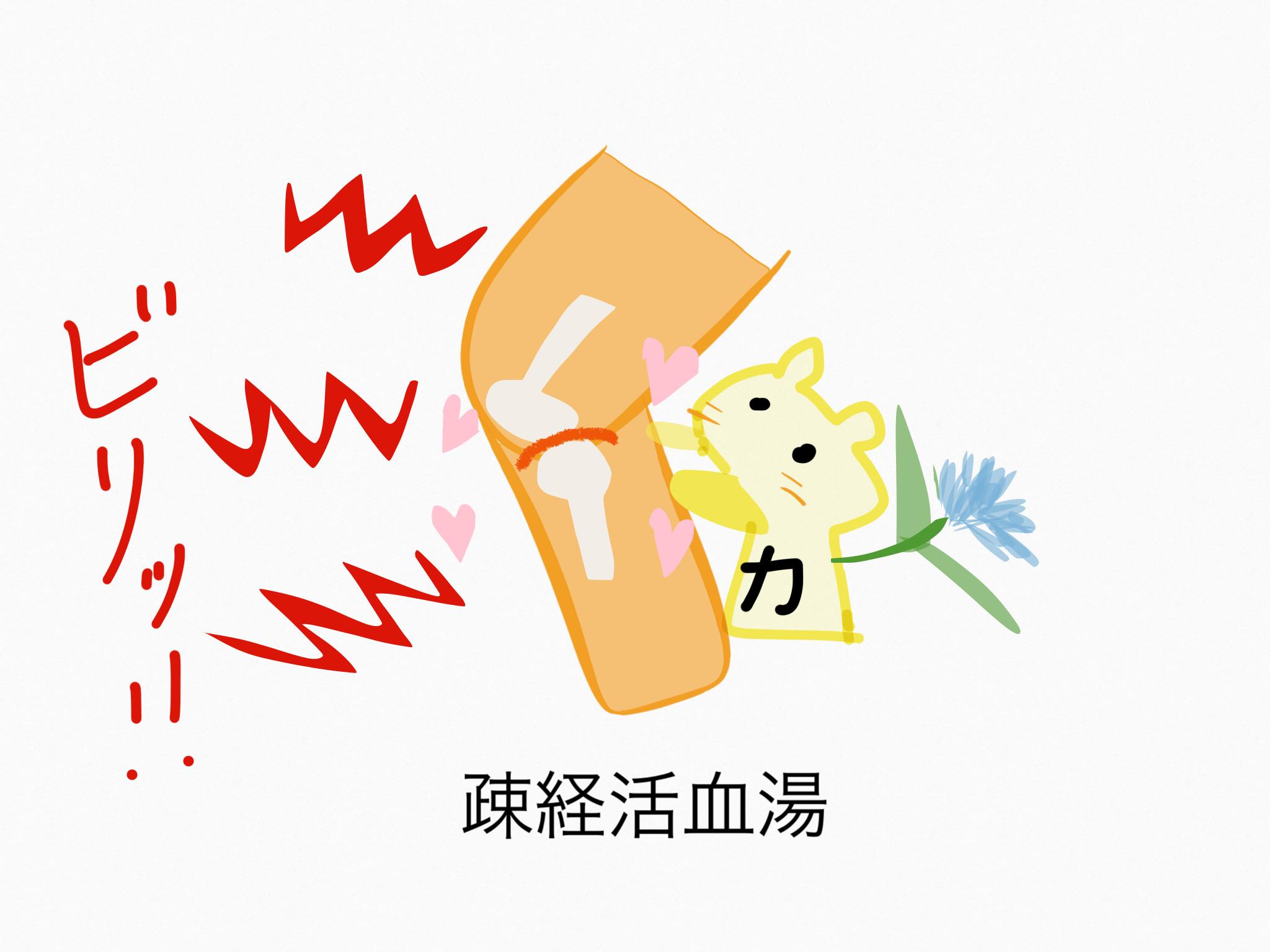 疎経活血湯(そけいかっけつとう)[鎮痛]【漢方の覚え方】