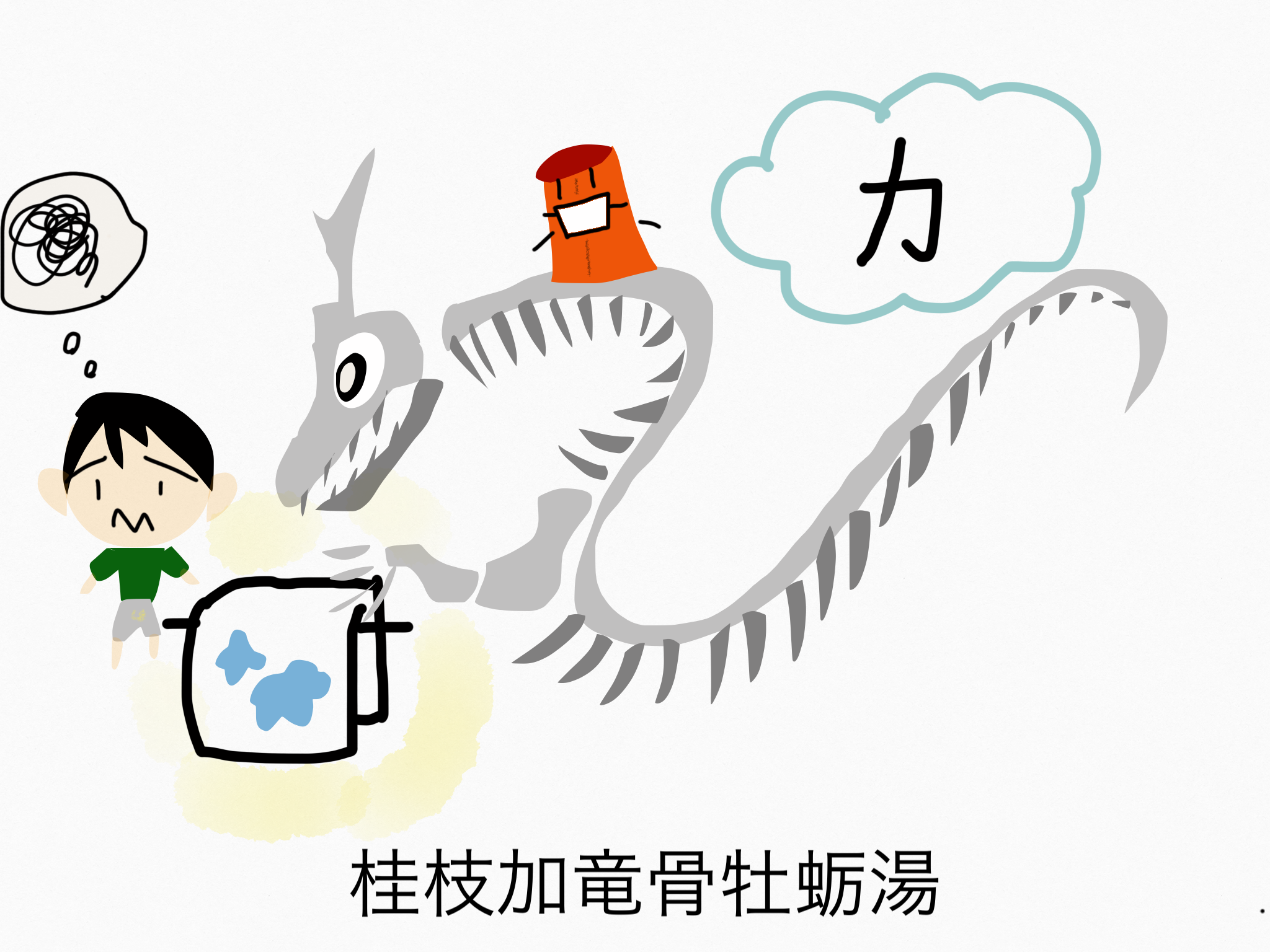 桂枝加竜骨牡蛎湯(けいしかりゅうこつぼれいとう)[不眠症・神経症]【漢方の覚え方】