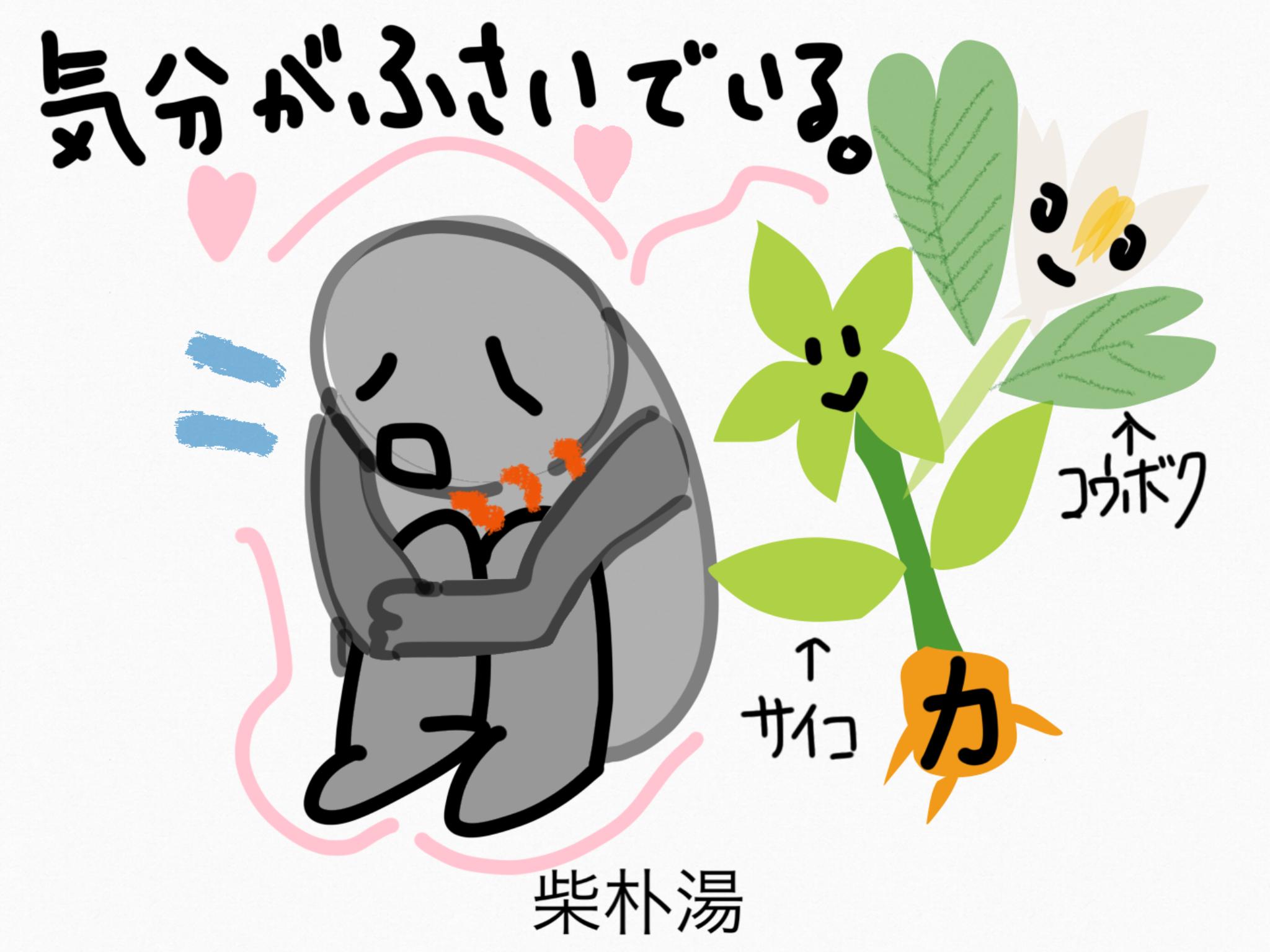 柴朴湯(さいぼくとう)[咳]【漢方の覚え方】