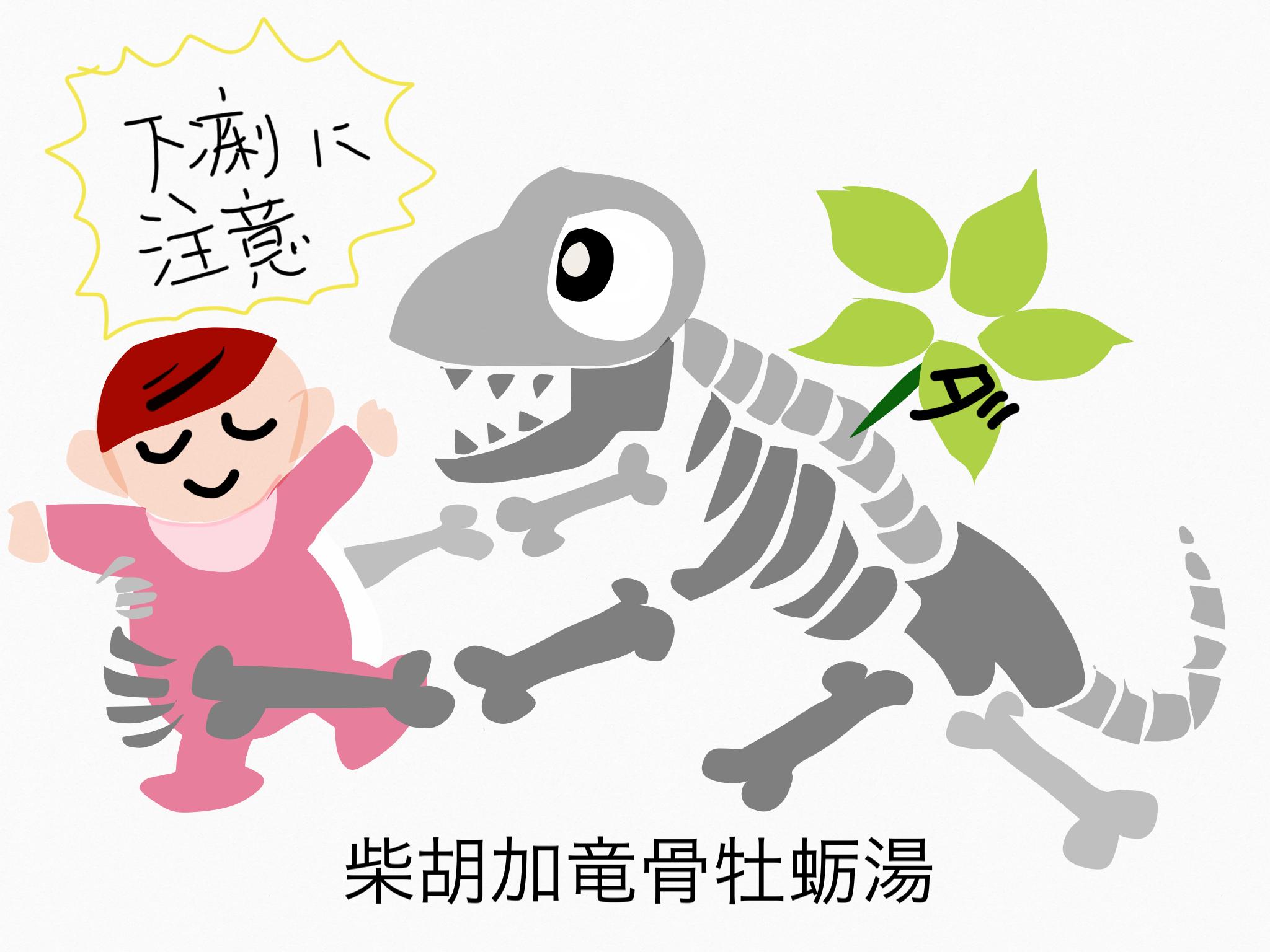 柴胡加竜骨牡蛎湯(さいこかりゅうこつぼれいとう)[神経症・便秘]【漢方の覚え方】