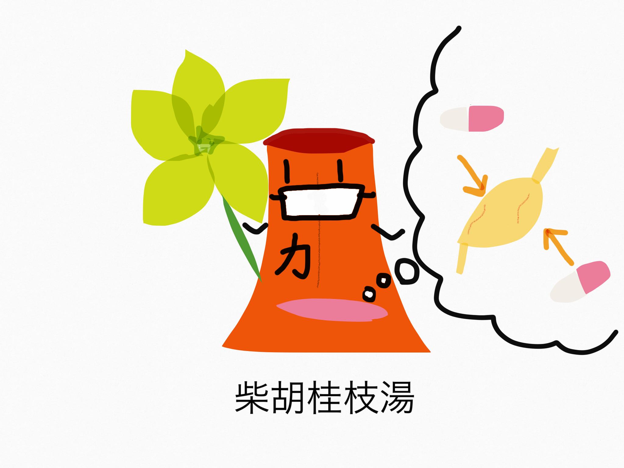 柴胡桂枝湯(さいこけいしとう)[かぜ]【漢方の覚え方】