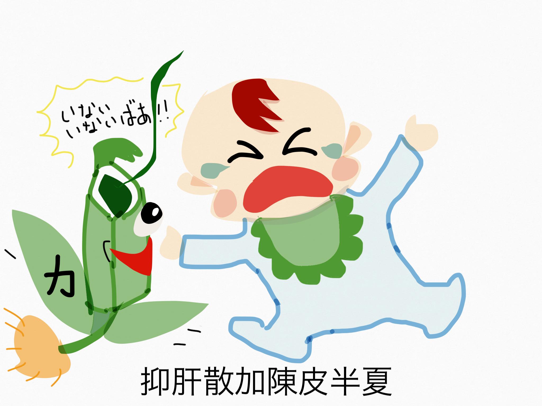 抑肝散加陳皮半夏(よくかんさんかちんぴはんげ)[不眠症・神経症]【漢方の覚え方】