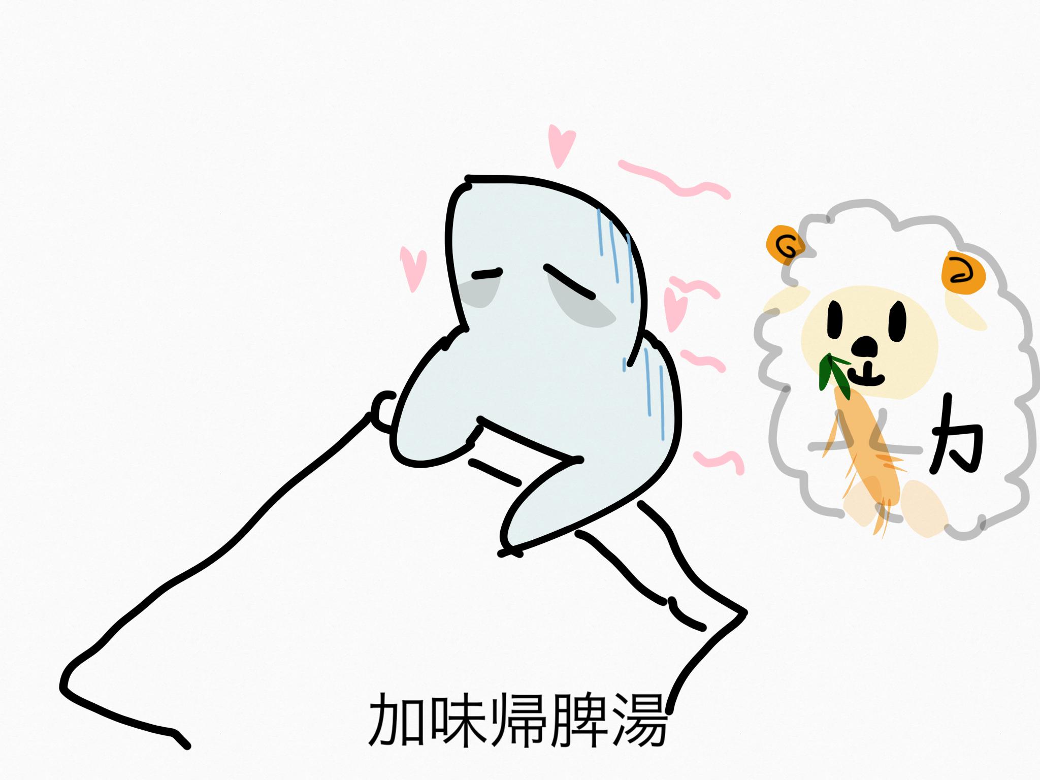 加味帰脾湯(かみきひとう)[不眠症・神経症]【漢方の覚え方】
