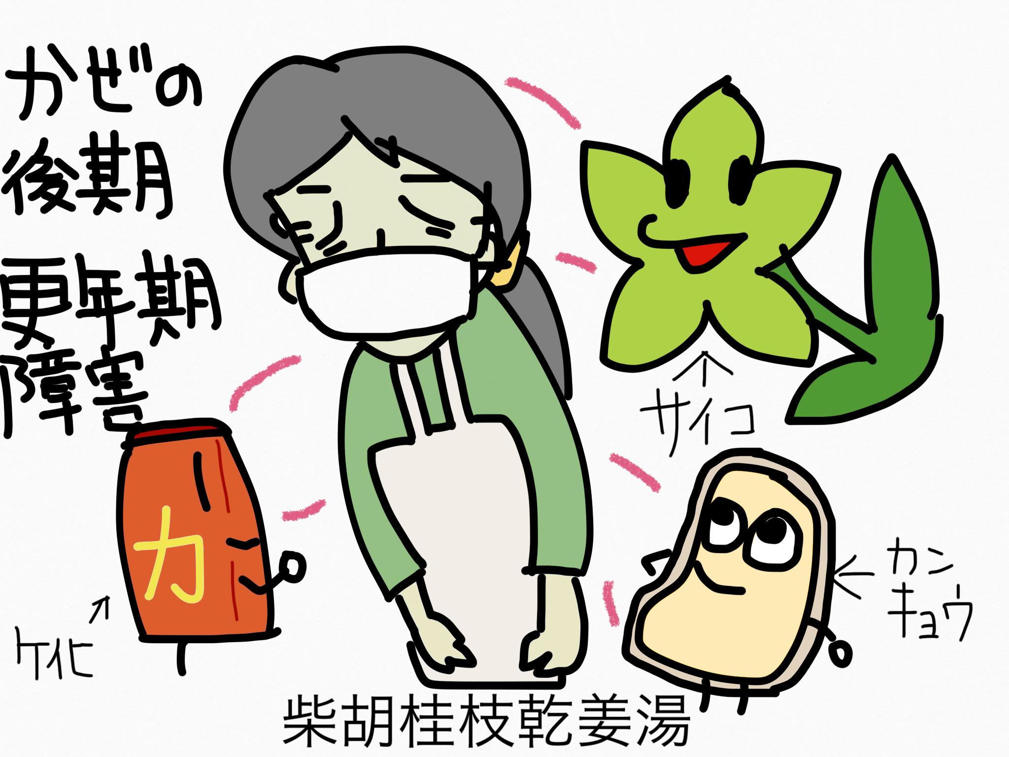 柴胡桂枝乾姜湯(さいこけいしかんきょうとう)[更年期障害]【漢方の覚え方】