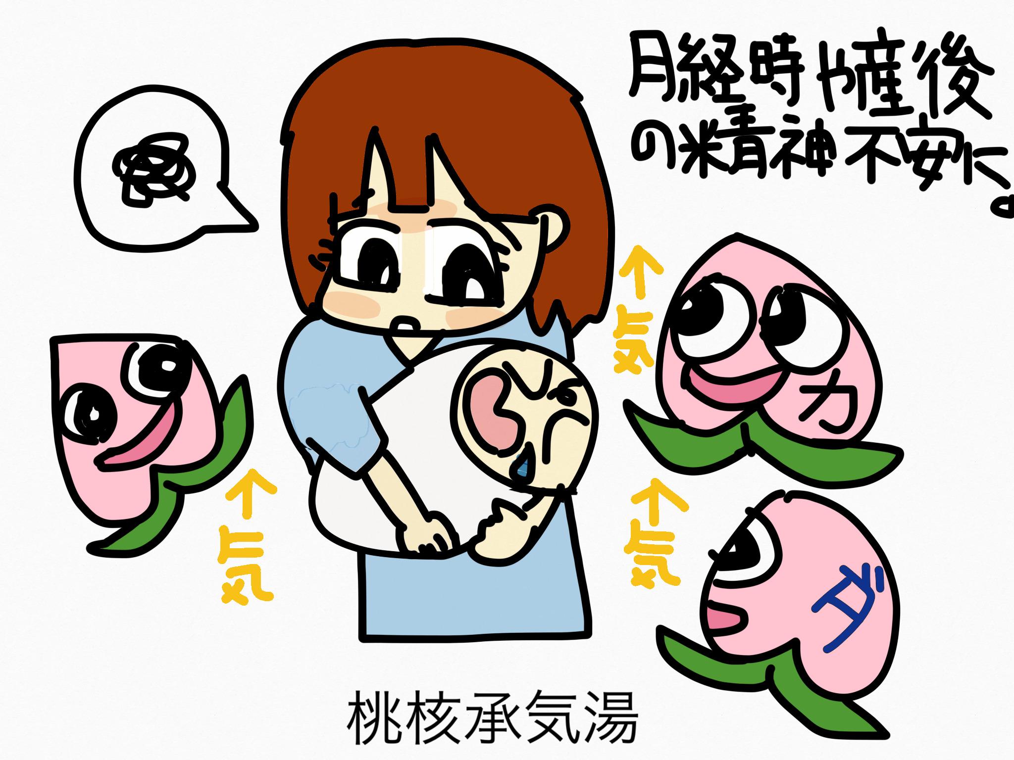 桃核承気湯(とうかくじょうきとう)[月経に伴う症状]【漢方の覚え方】