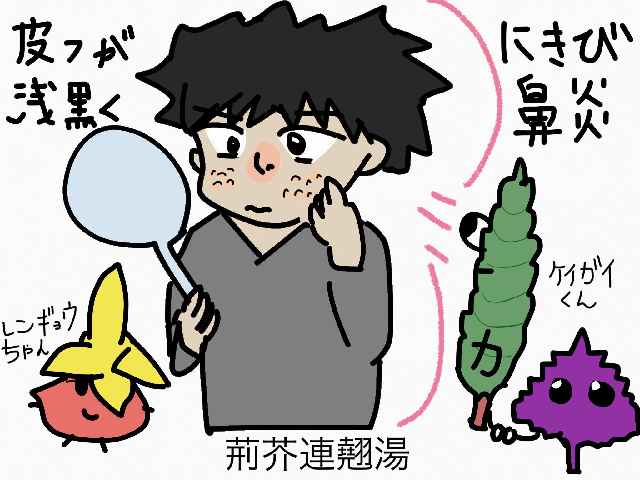 荊芥連翹湯(けいがいれんぎょうとう)[鼻の症状]【漢方の覚え方】