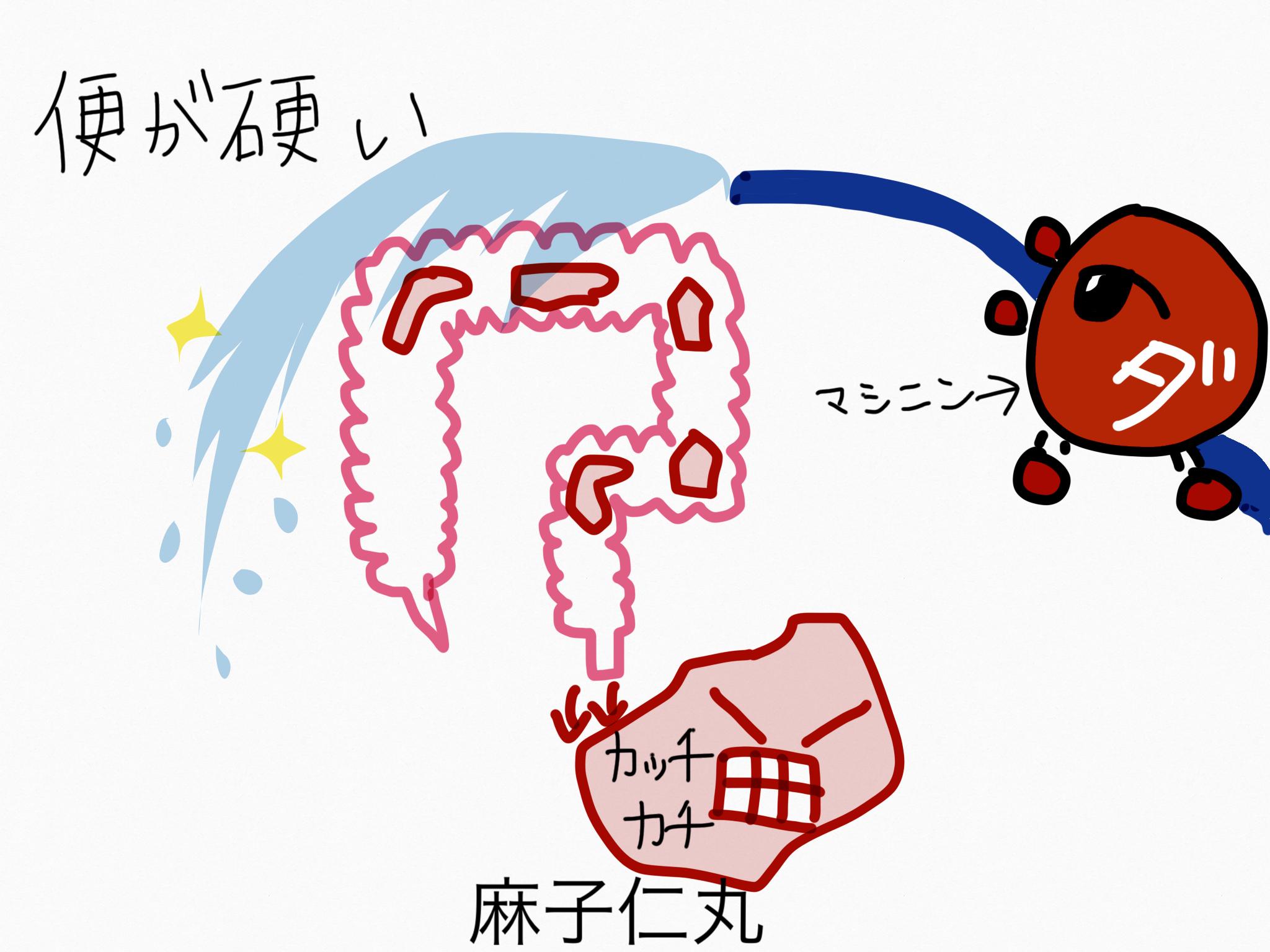 麻子仁丸(ましにんがん)[腸の不調]【漢方の覚え方】