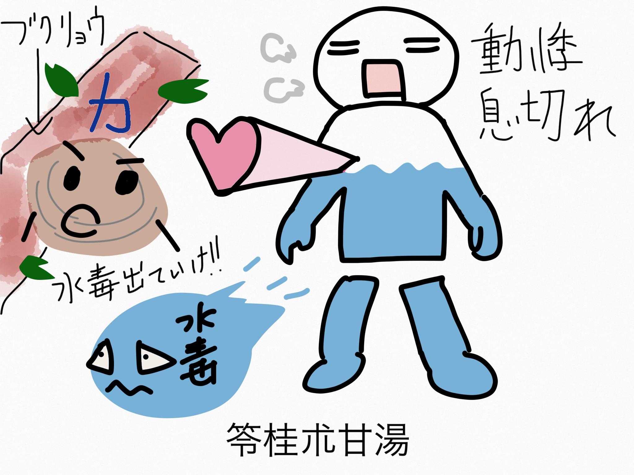 苓桂朮甘湯(りょうけいじゅつかんとう)[動悸・息切れ]【漢方の覚え方】