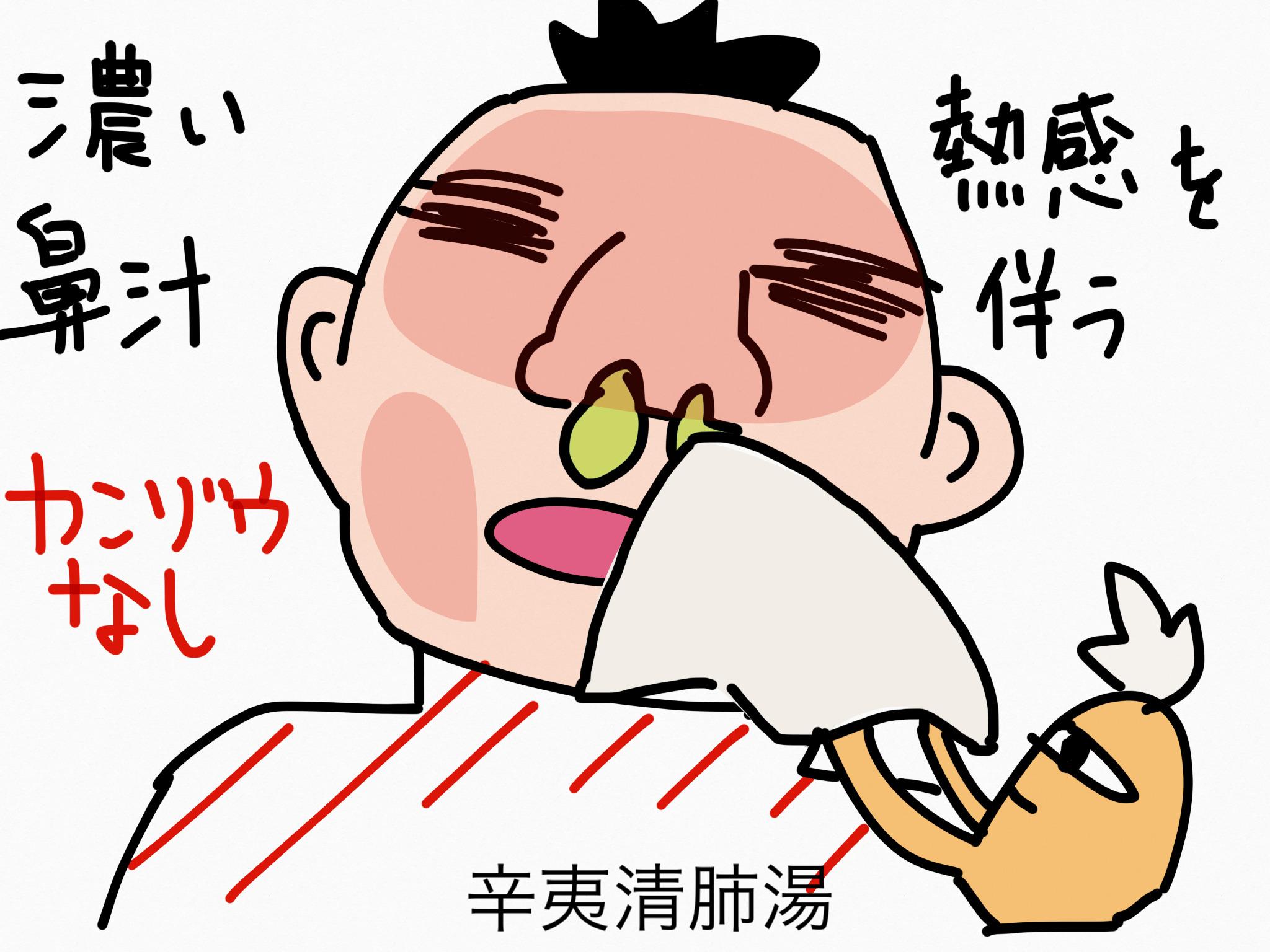 辛夷清肺湯(しんいせいはいとう)[鼻の症状]【漢方の覚え方】