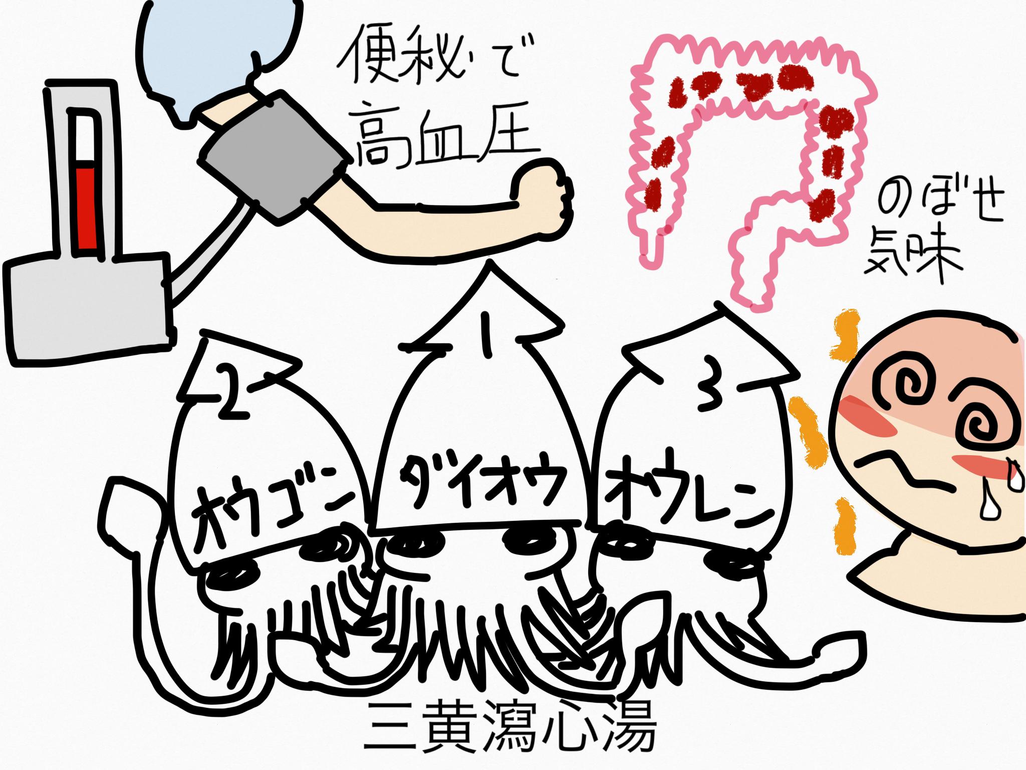 三黄瀉心湯(さんおうしゃしんとう)[高血圧の随伴症状]【漢方の覚え方】