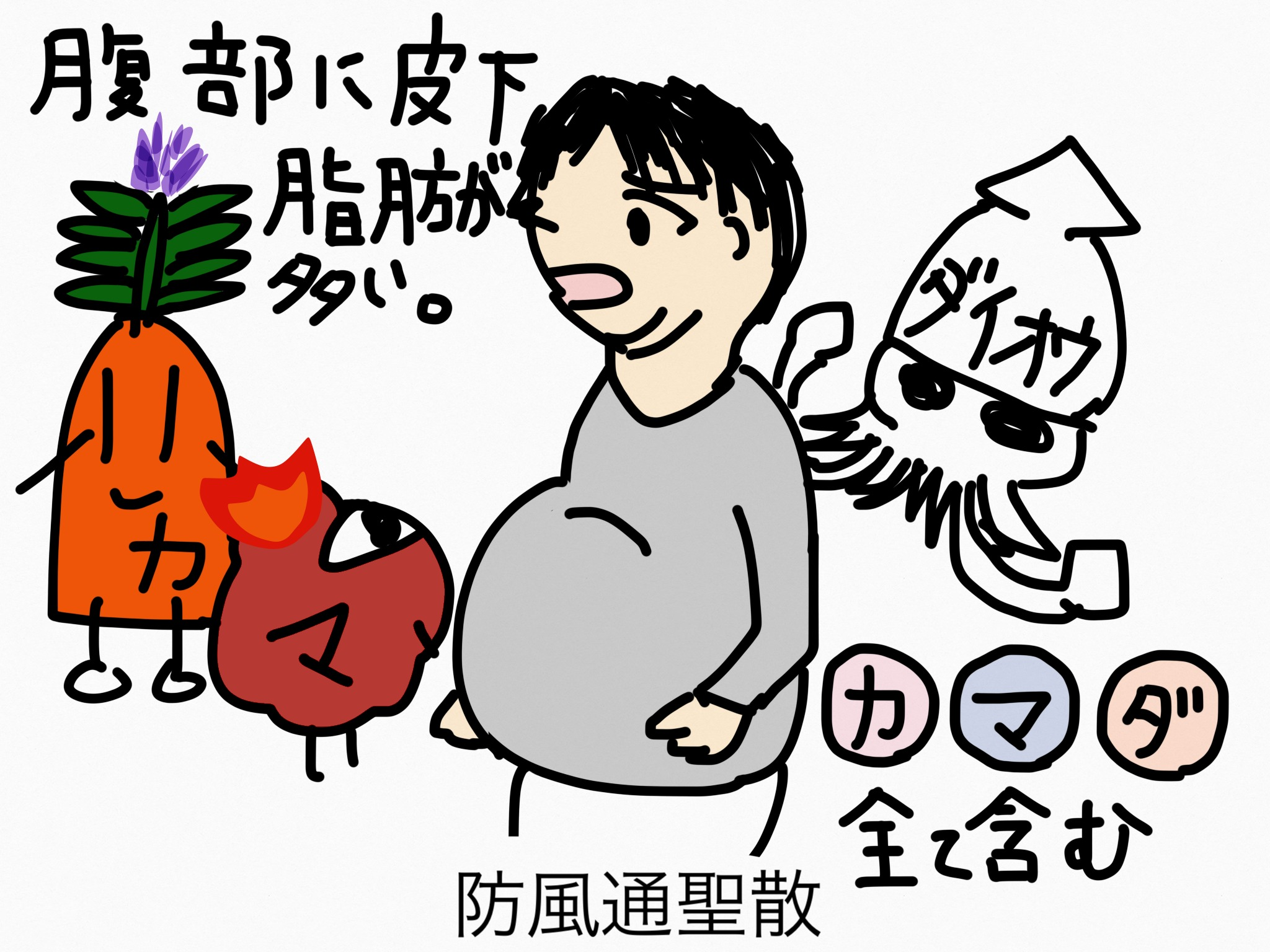 防風通聖散(ぼうふうつうしょうさん)[肥満症]【漢方の覚え方】