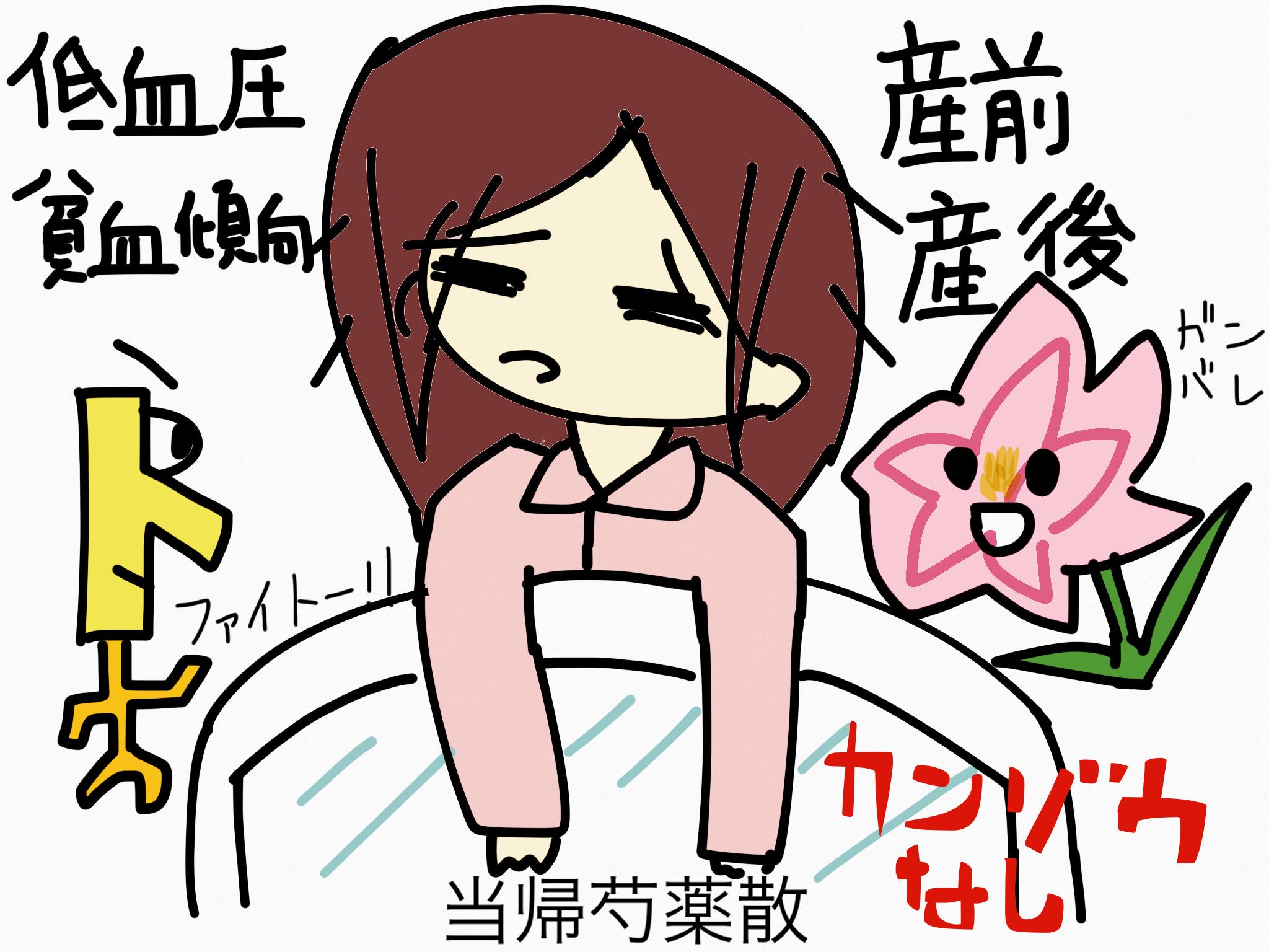 当帰芍薬散(とうきしゃくやくさん)[月経に伴う症状]【漢方の覚え方】