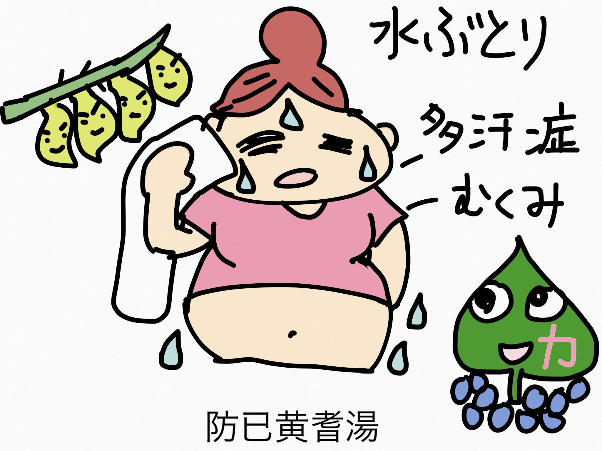 防已黄耆湯(ぼういおうぎとう)[肥満症]【漢方の覚え方】