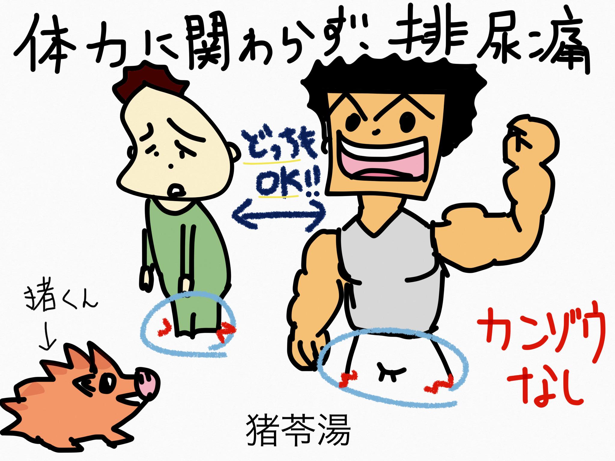猪苓湯(ちょれいとう)[排尿異常]【漢方の覚え方】