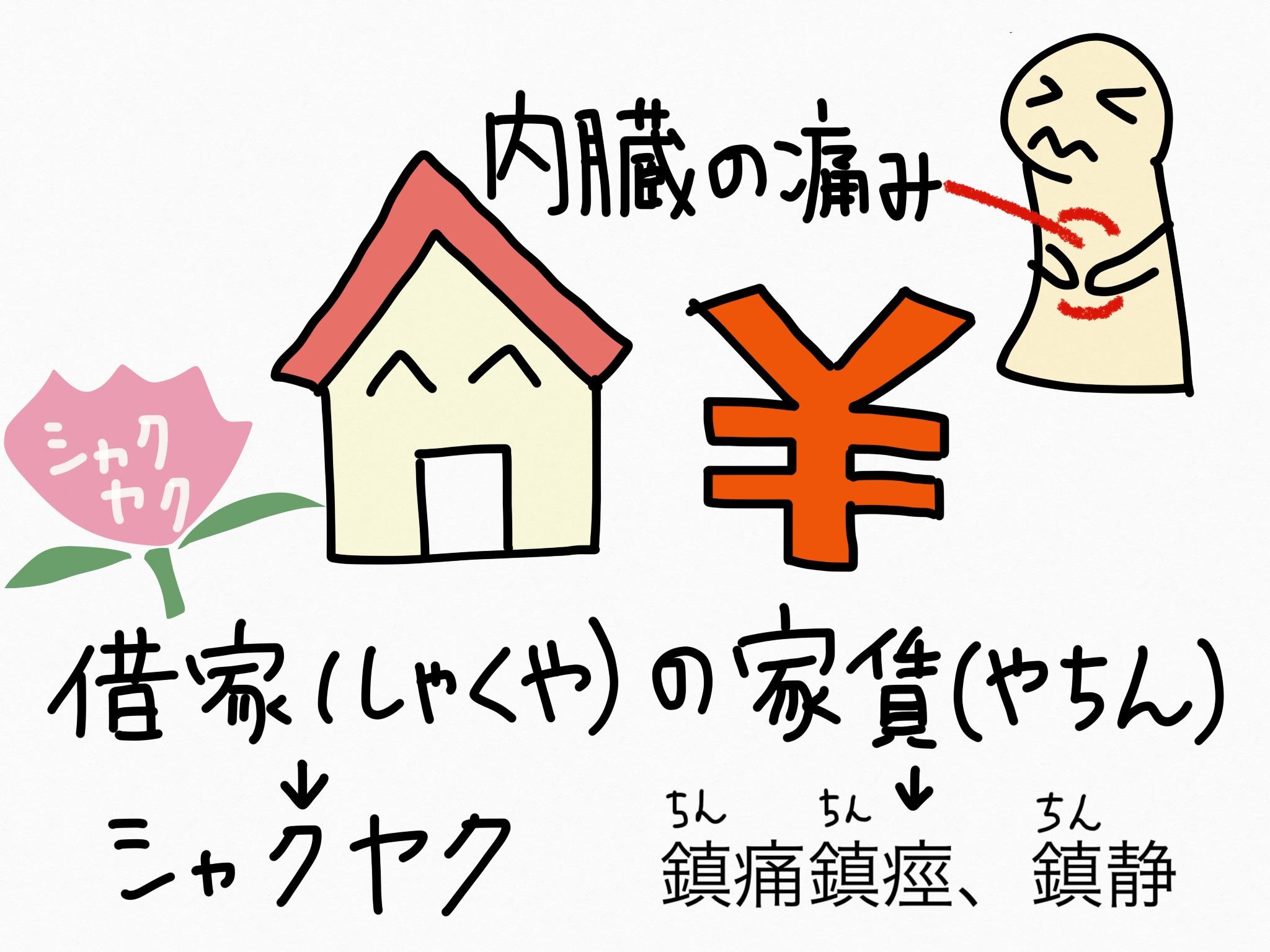 シャクヤク[解熱鎮痛薬他]【生薬の覚え方・暗記方法】