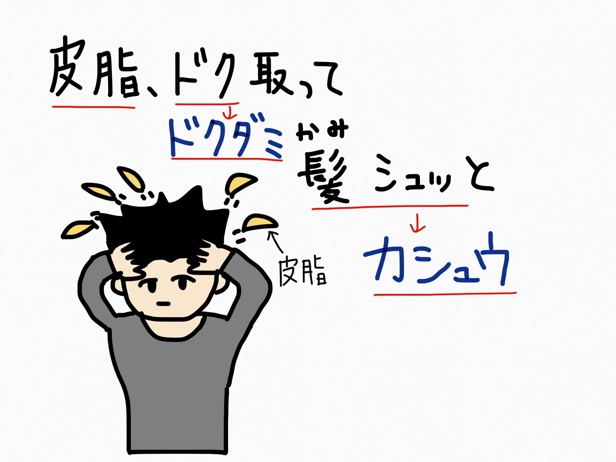 カシュウ[毛髪用薬他]生薬の覚え方・暗記方法・語呂合わせ