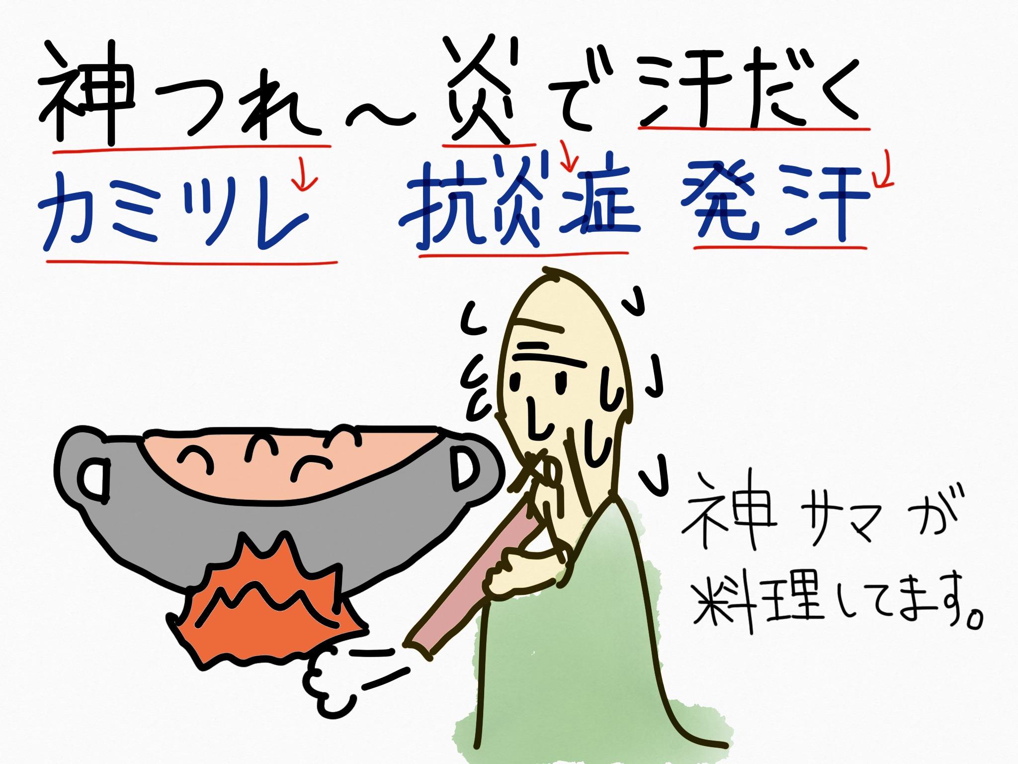 カミツレ[かぜ薬他]生薬の覚え方・暗記方法・語呂合わせ
