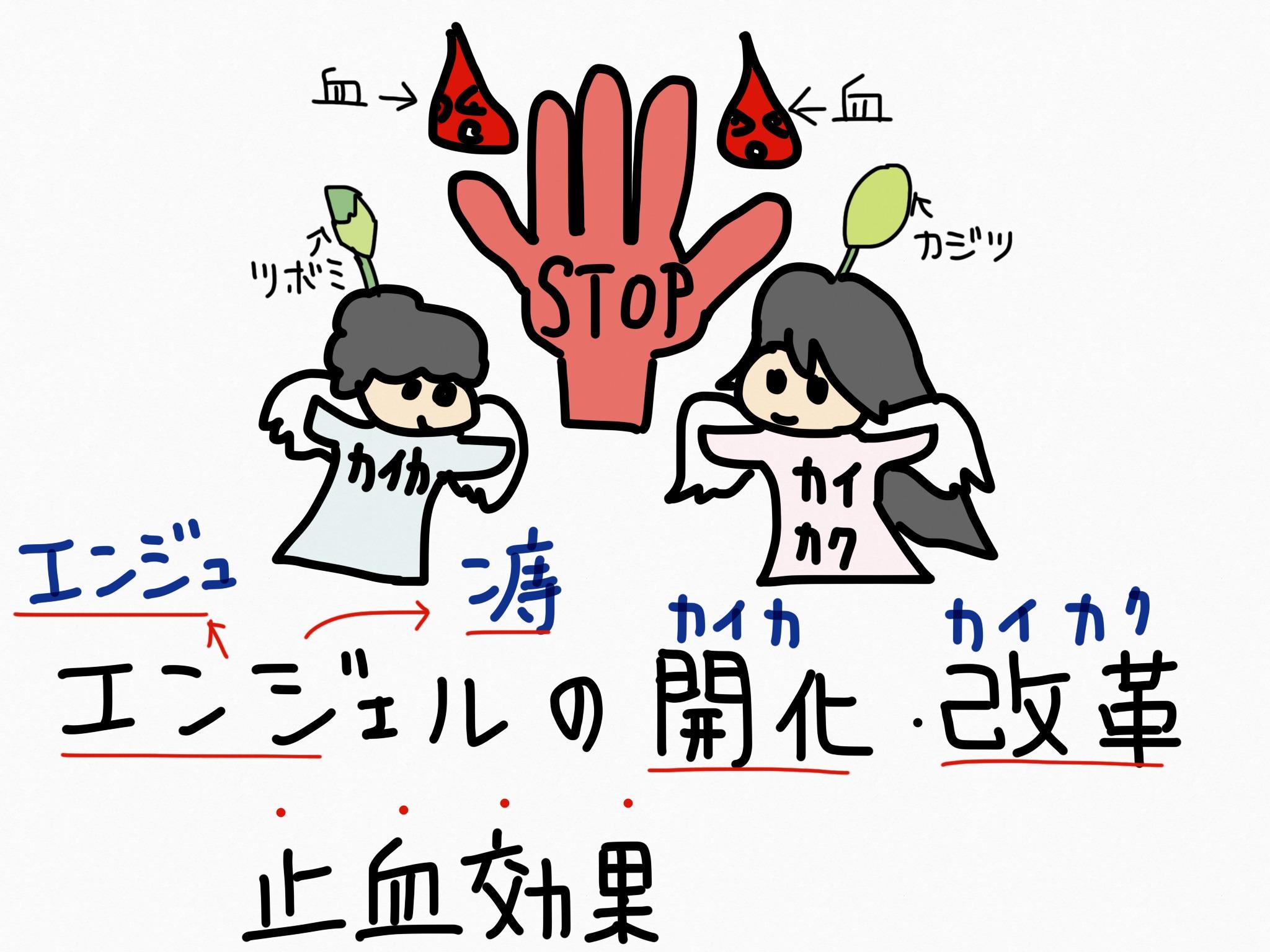 カイカ/カイカク[痔疾用薬]生薬の覚え方・暗記方法・語呂合わせ
