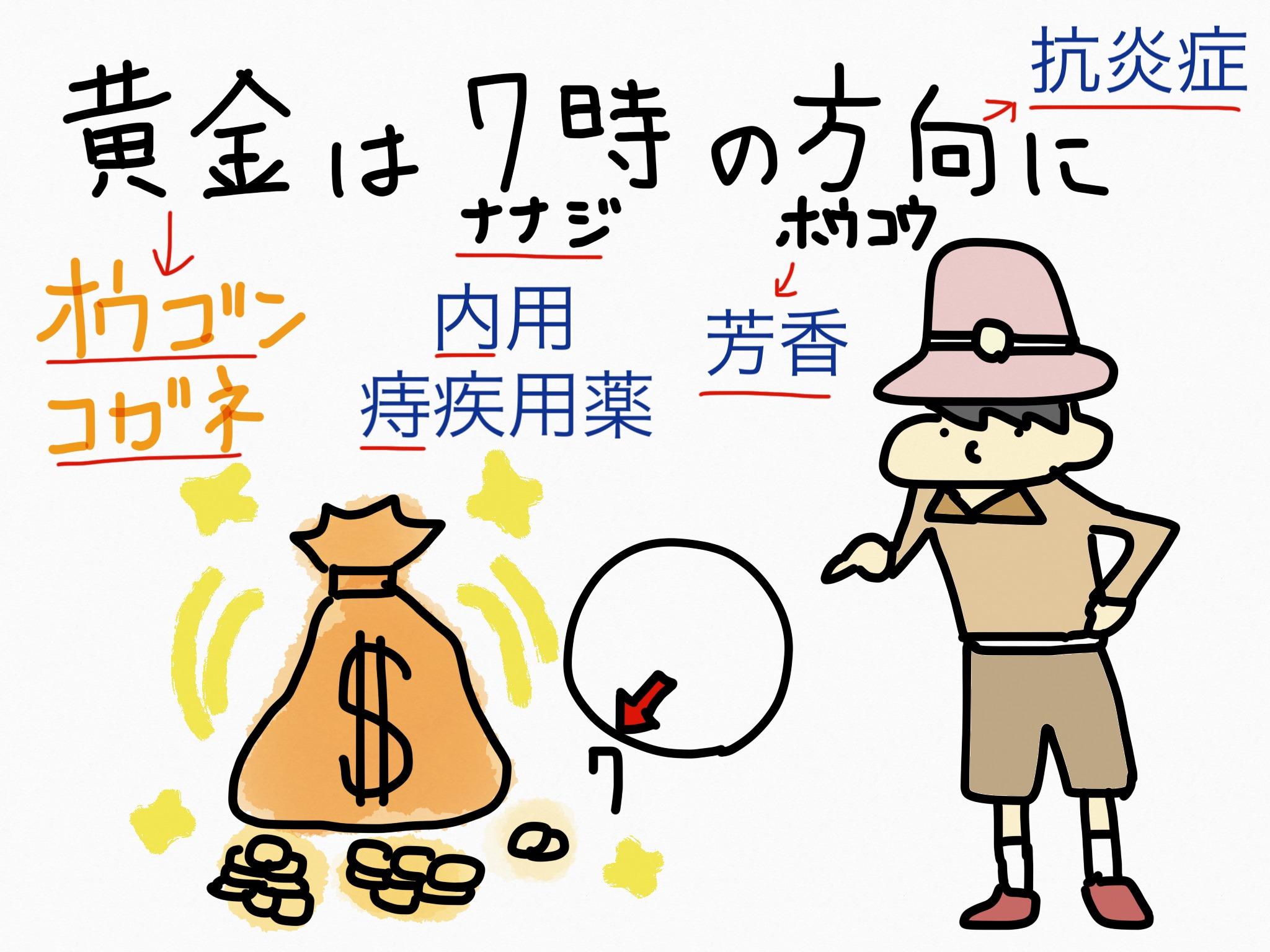 オウゴン[痔疾用薬他]生薬の覚え方・暗記方法・語呂合わせ
