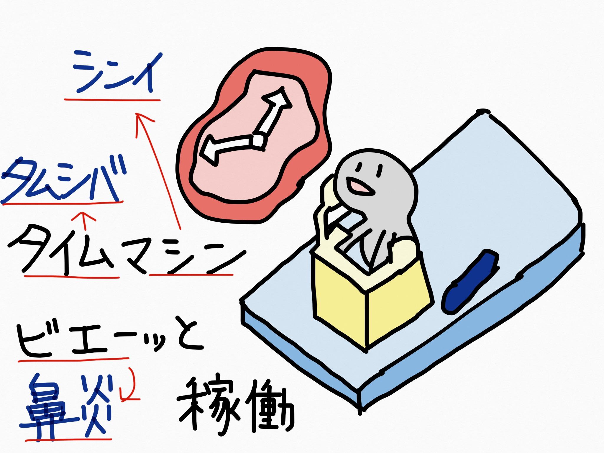 シンイ[鼻炎用内服薬]生薬の覚え方・暗記方法・語呂合わせ