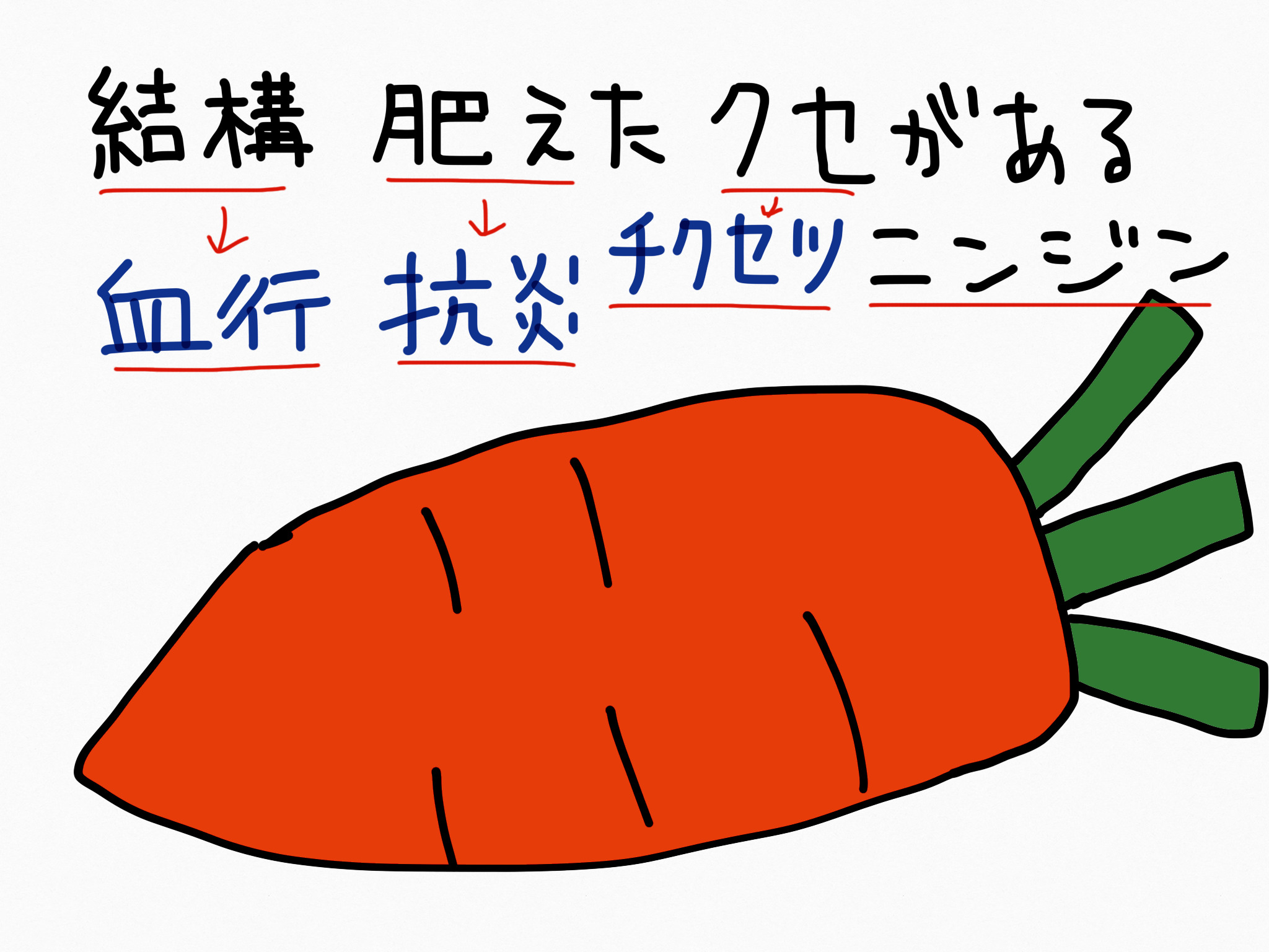 チクセツニンジン[毛髪用薬他]生薬の覚え方・暗記方法・語呂合わせ