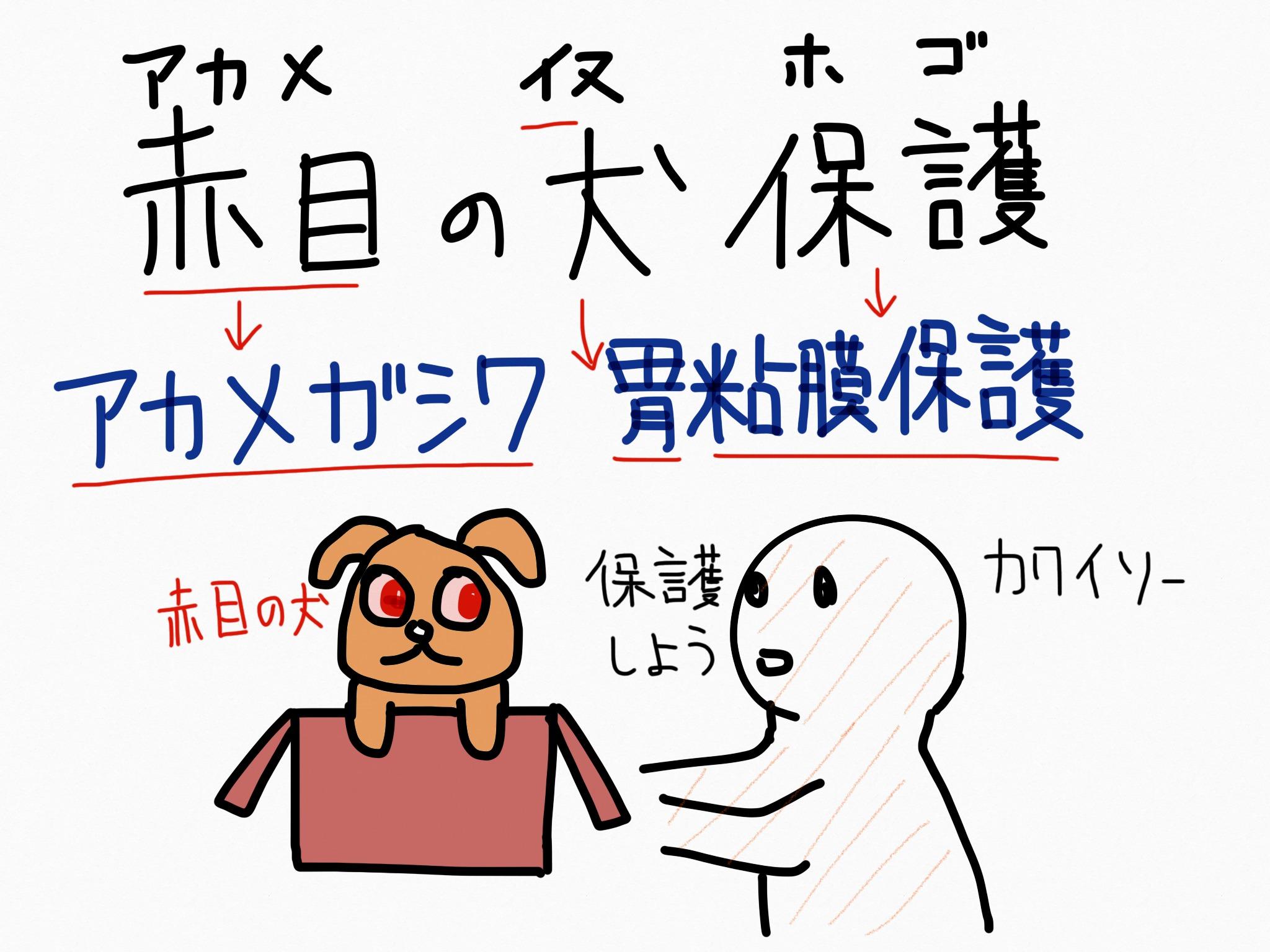 アカメガシワ[胃腸薬]生薬の覚え方・暗記方法・語呂合わせ