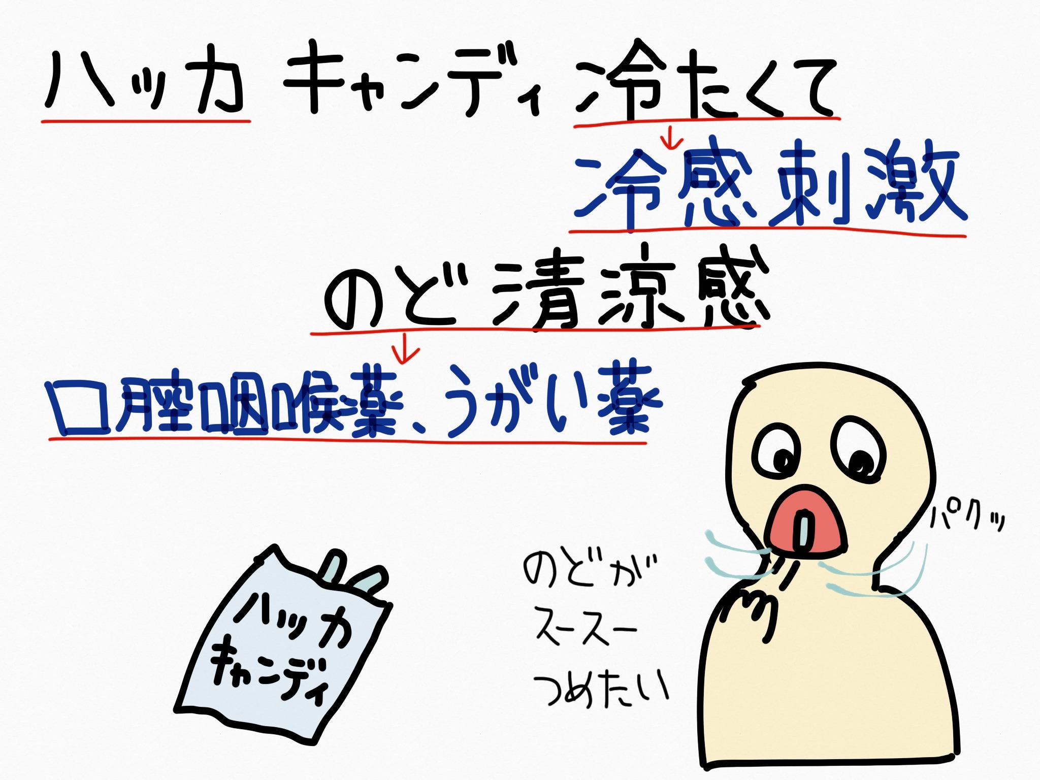 ハッカ/ハッカ油[口腔咽喉薬他]生薬の覚え方・暗記方法・語呂合わせ