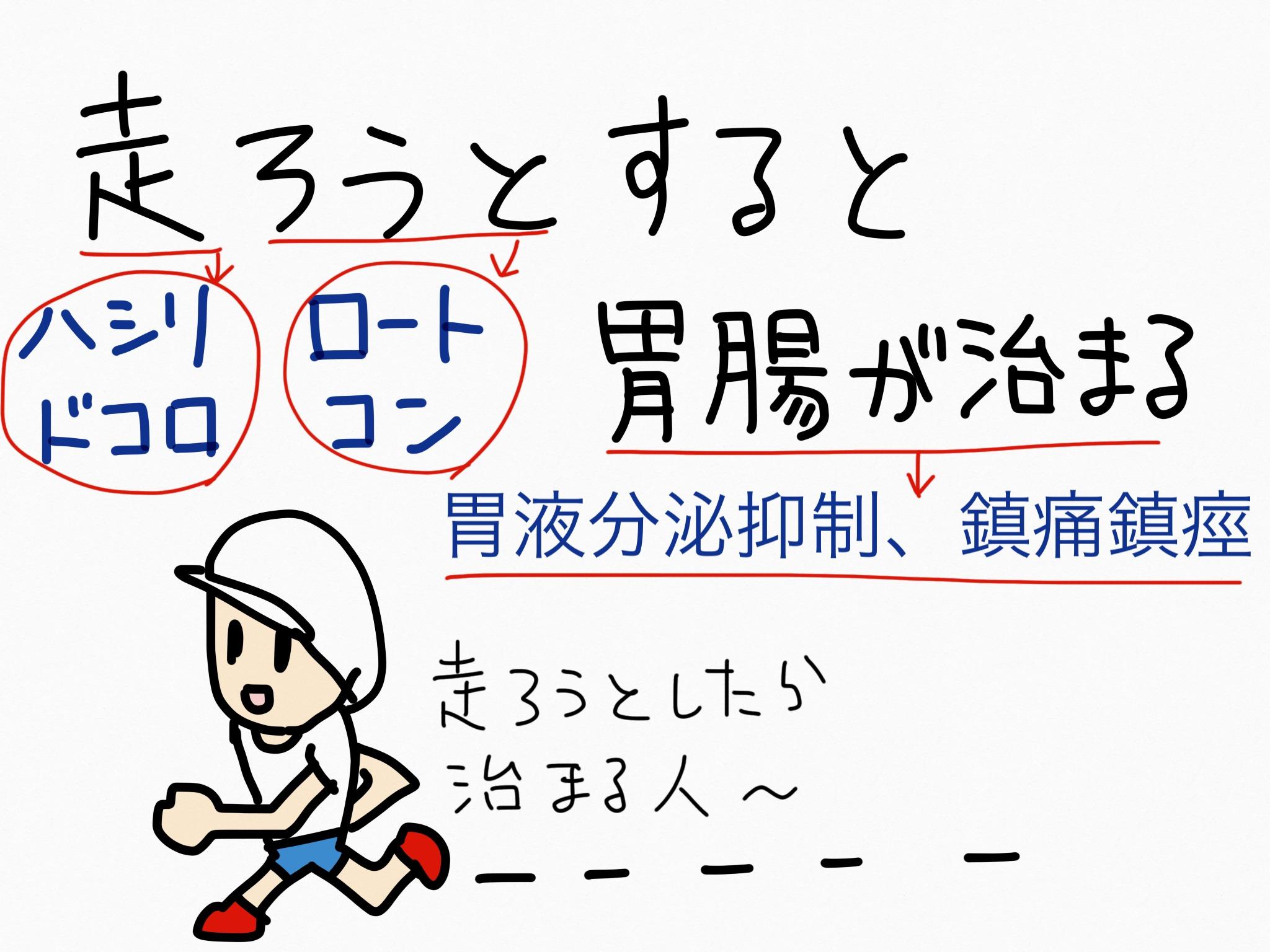 ロートエキス[胃腸薬他]生薬の覚え方・暗記方法・語呂合わせ