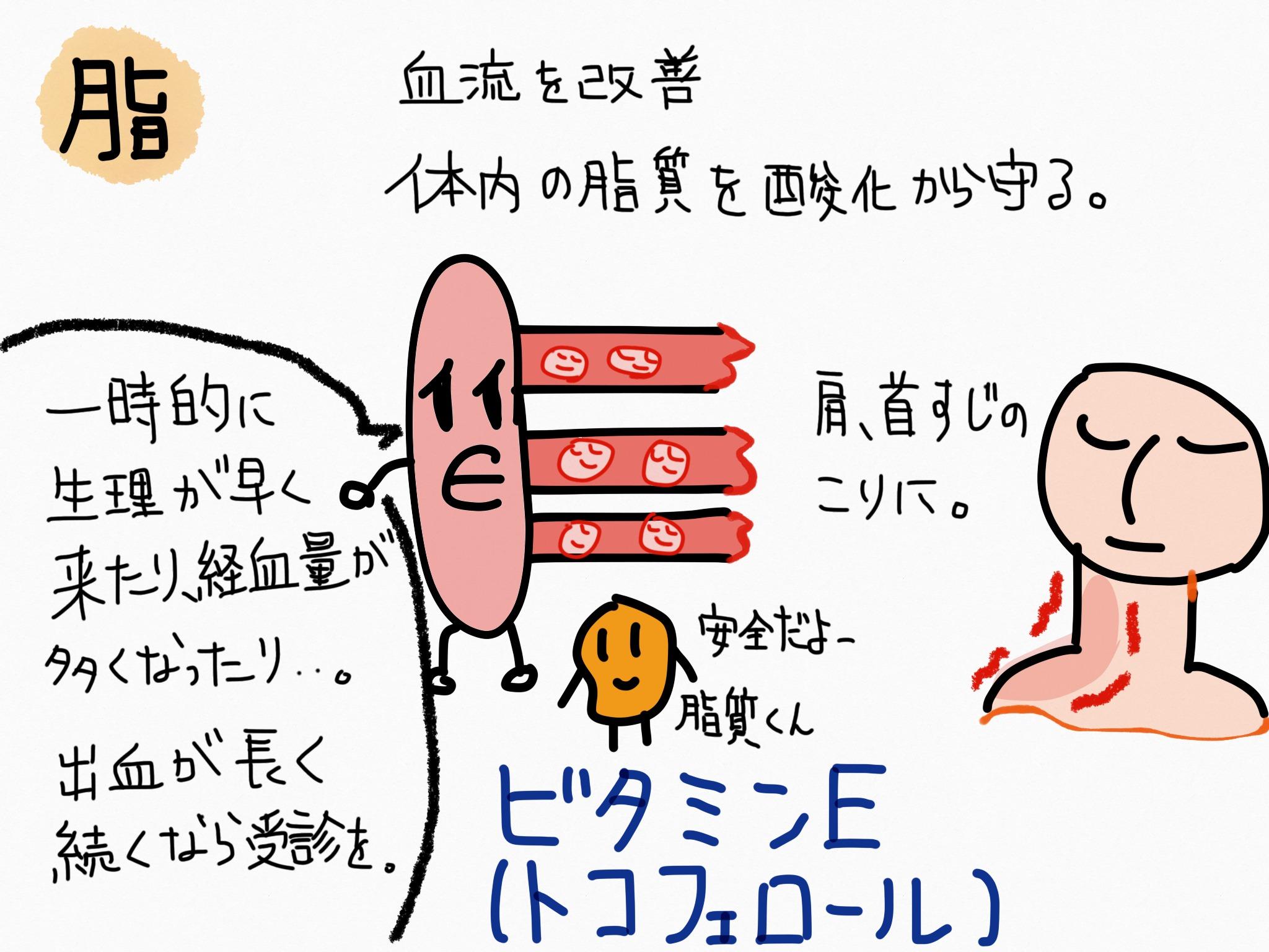 ビタミンE(トコフェロール)の覚え方