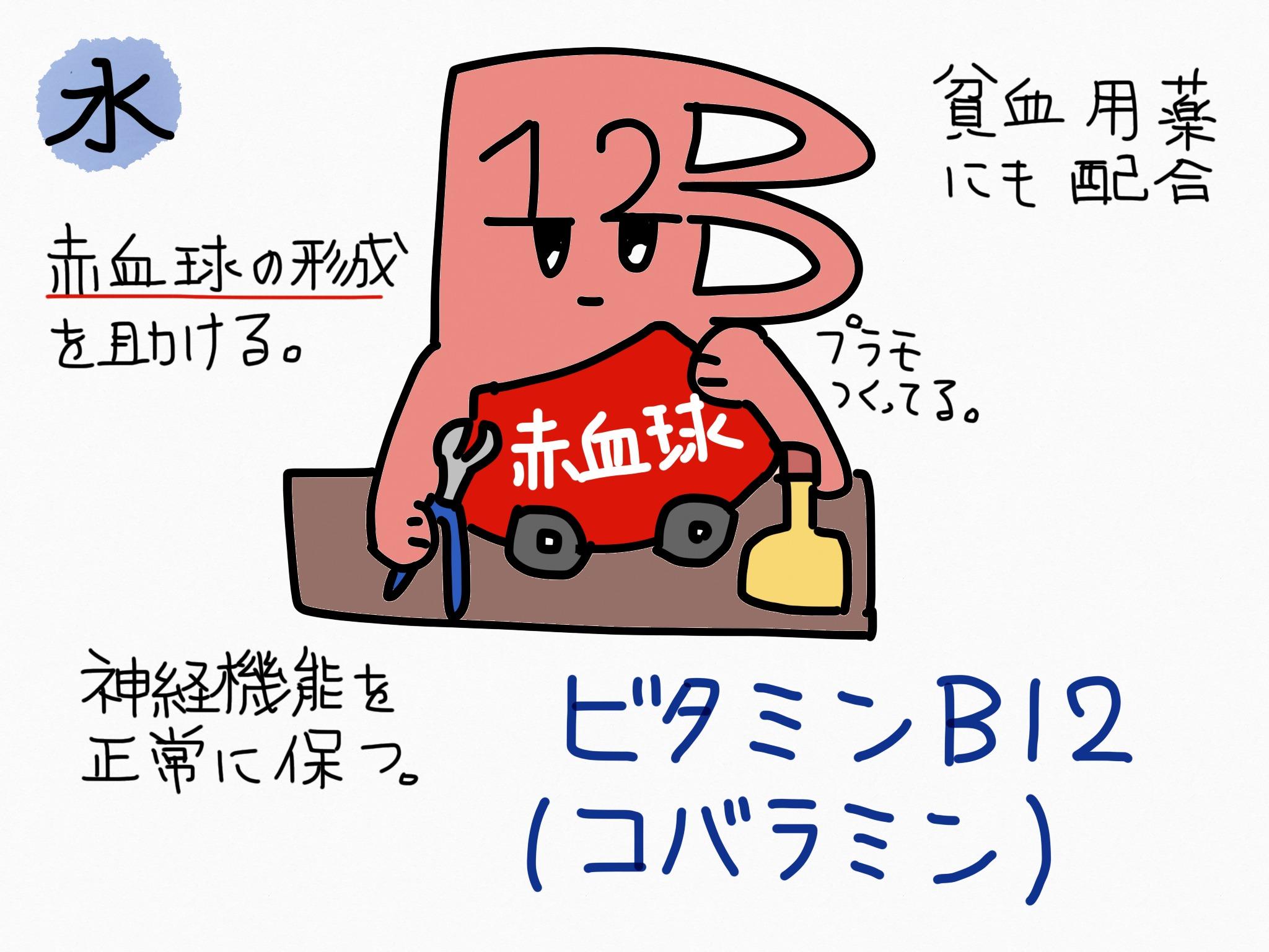 ビタミンB12(コバラミン)の覚え方