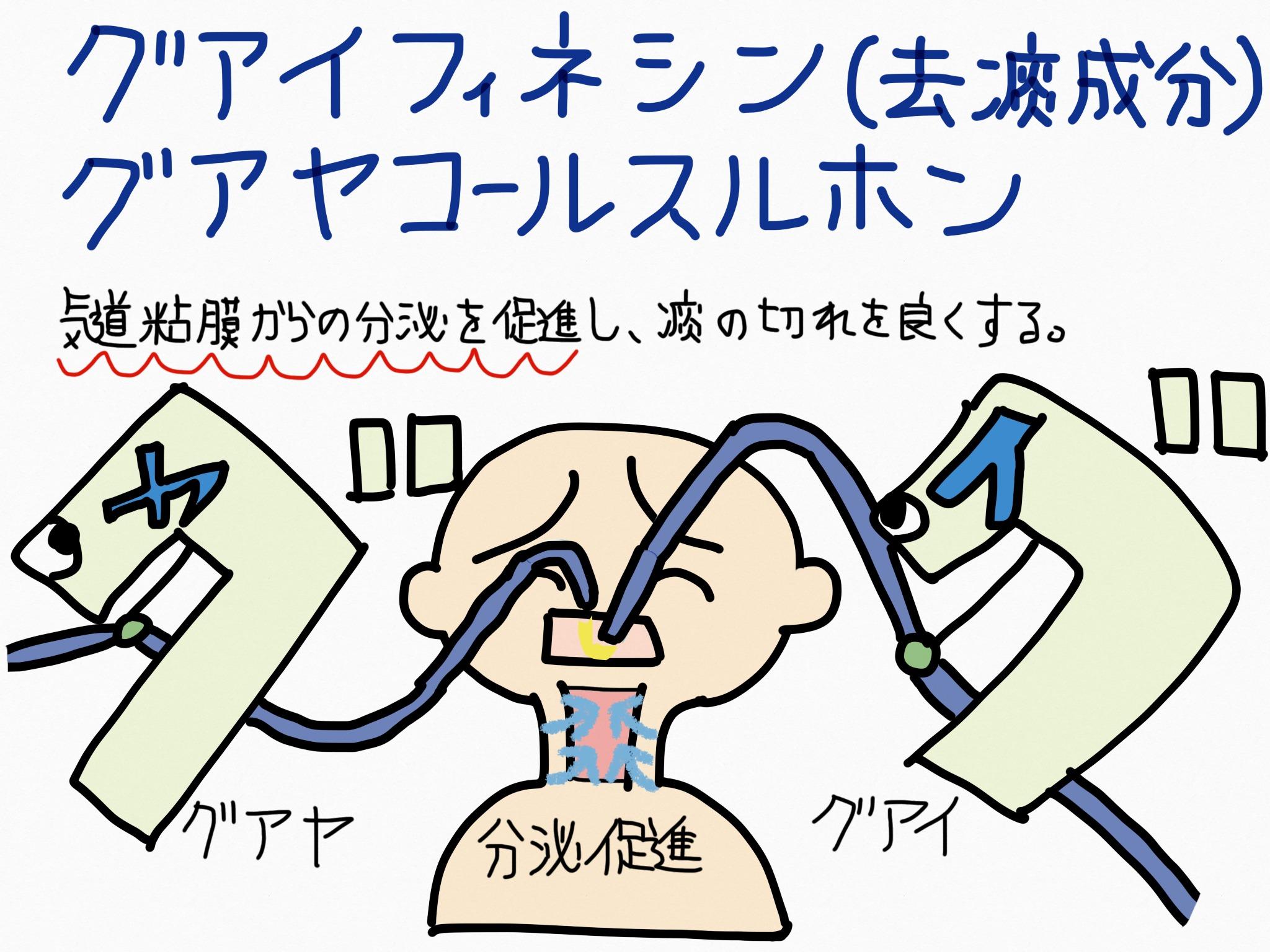 グアイフェネシン、グアヤコールスルホン酸カリウム・去痰成分の覚え方