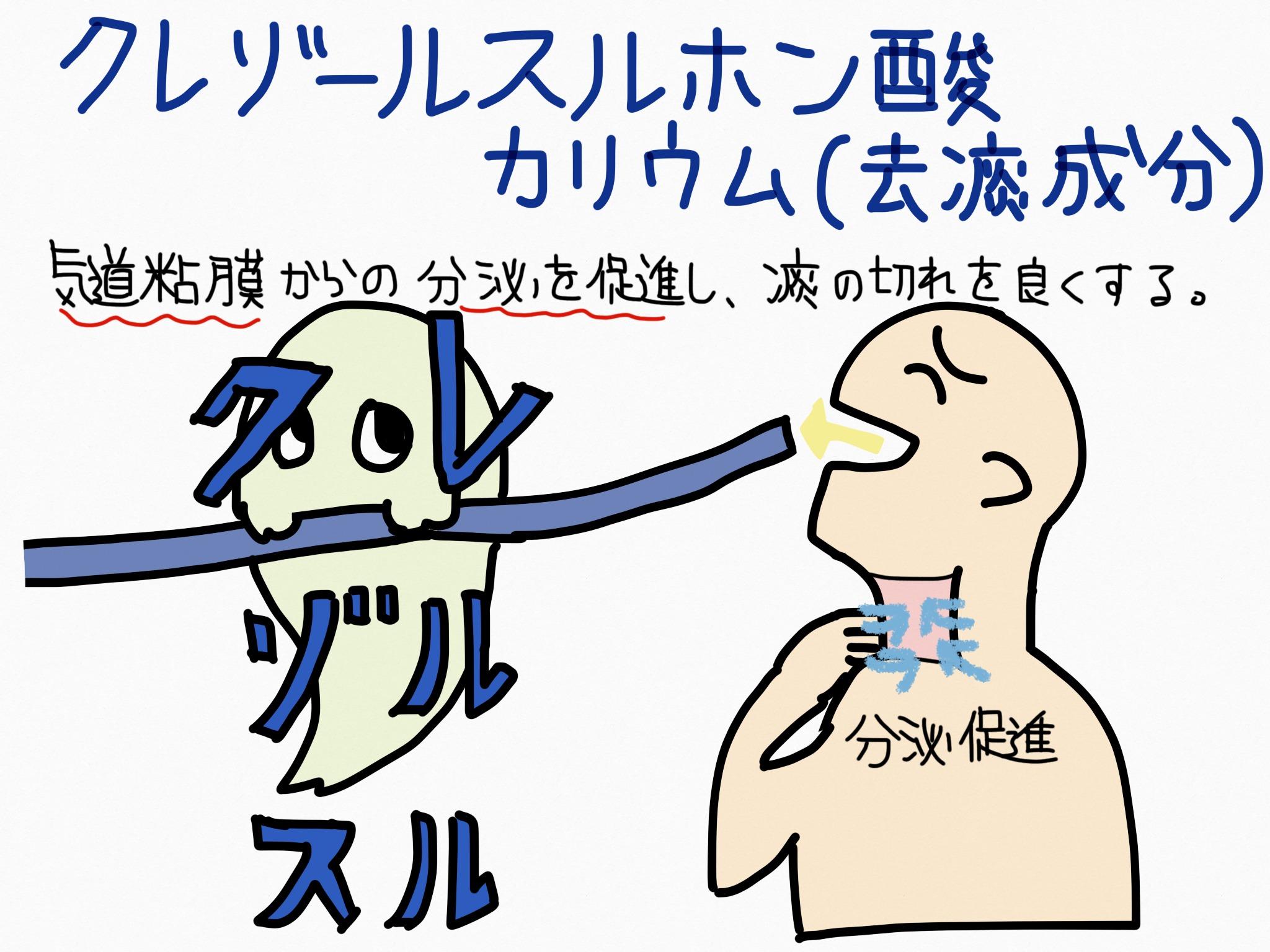 クレゾールスルホン酸カリウム・去痰成分の覚え方