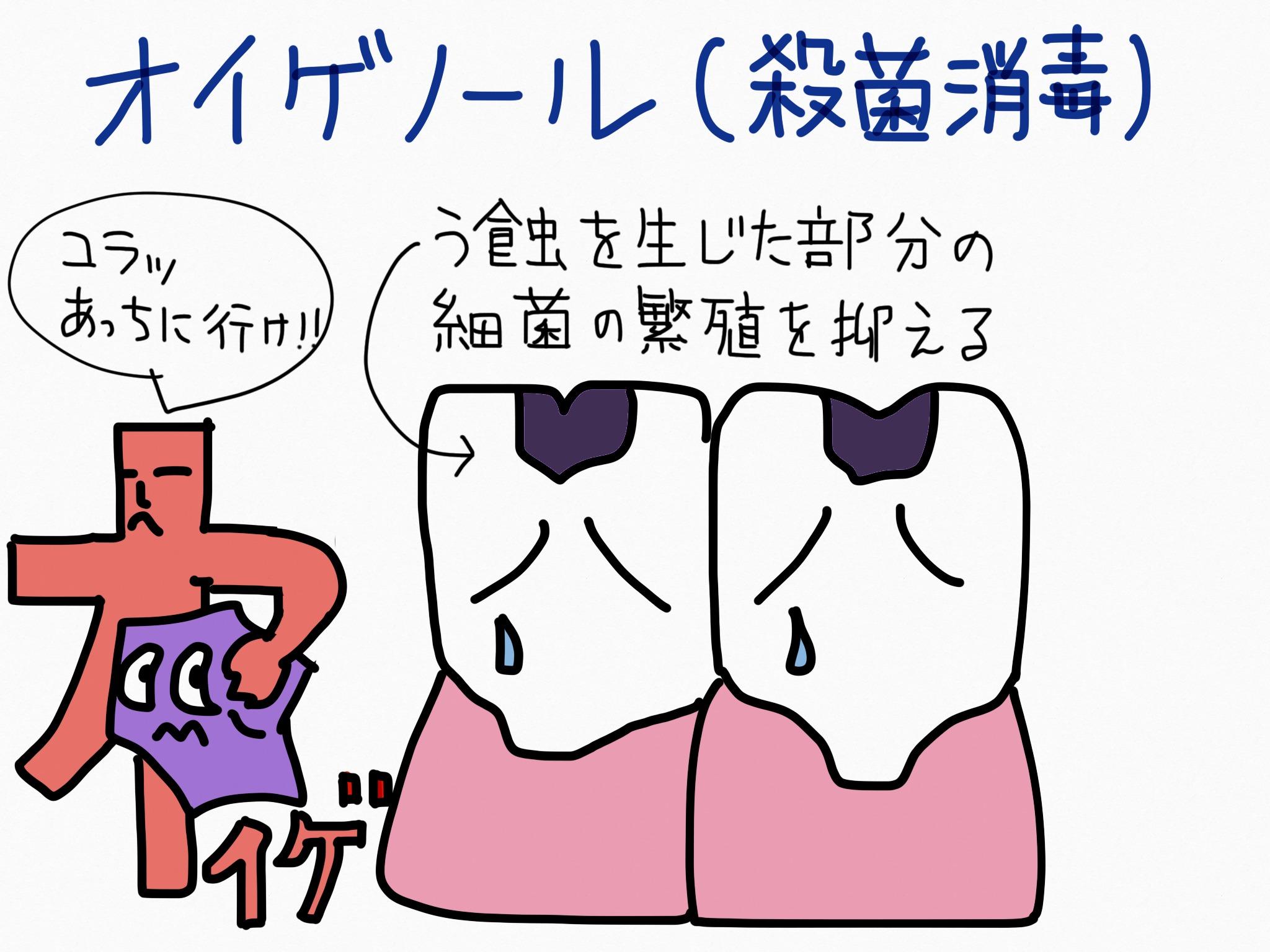 オイゲノール・殺菌消毒成分の覚え方