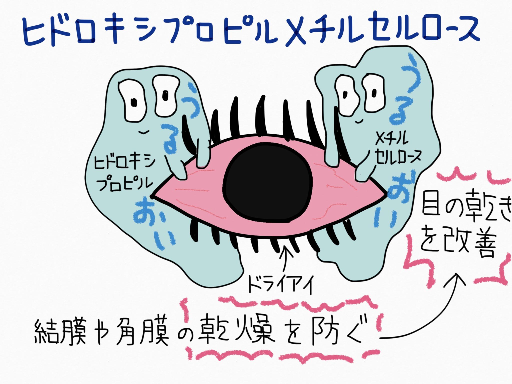 ヒドロキシプロピルメチルセルロース・目の乾きを改善する成分の覚え方