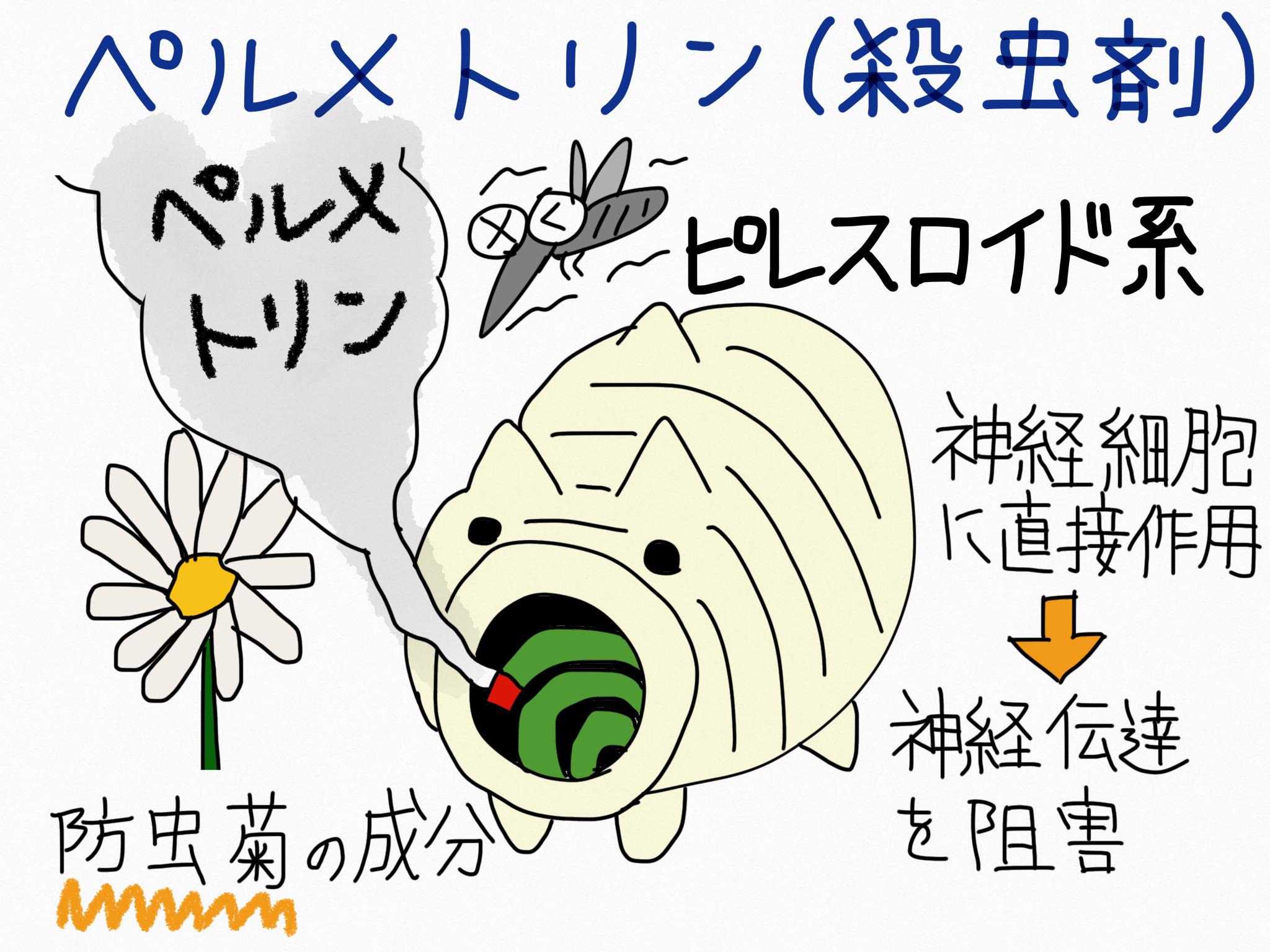 ペルメトリン・殺虫剤の成分の覚え方
