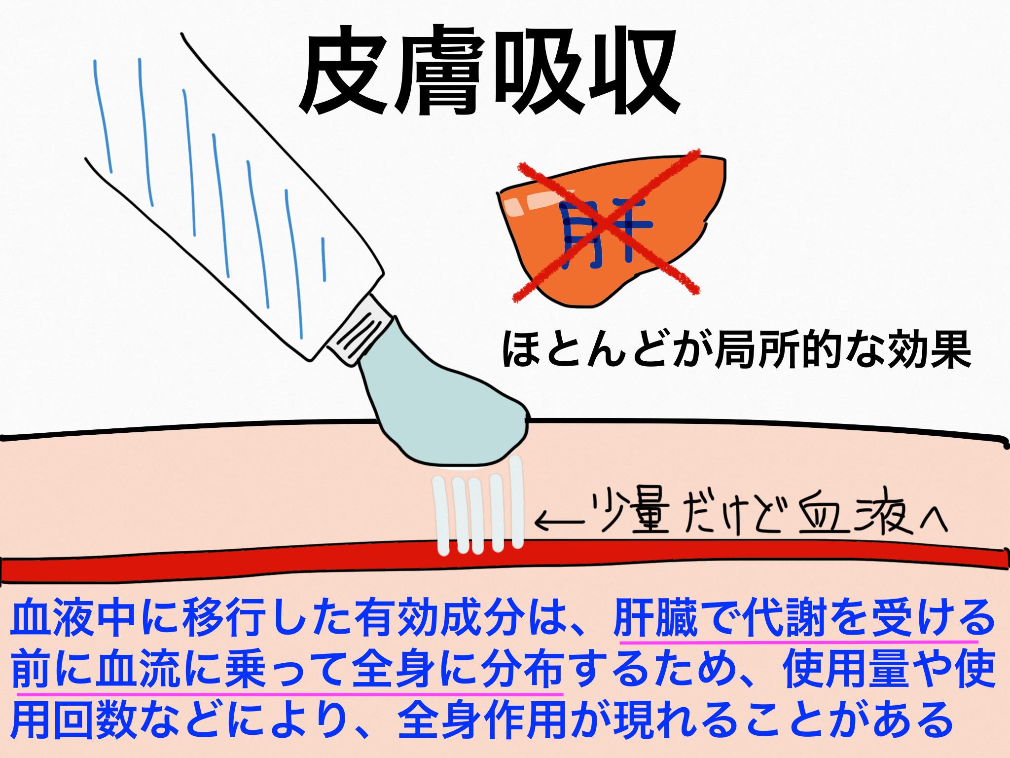 皮膚吸収【第2章の覚え方】