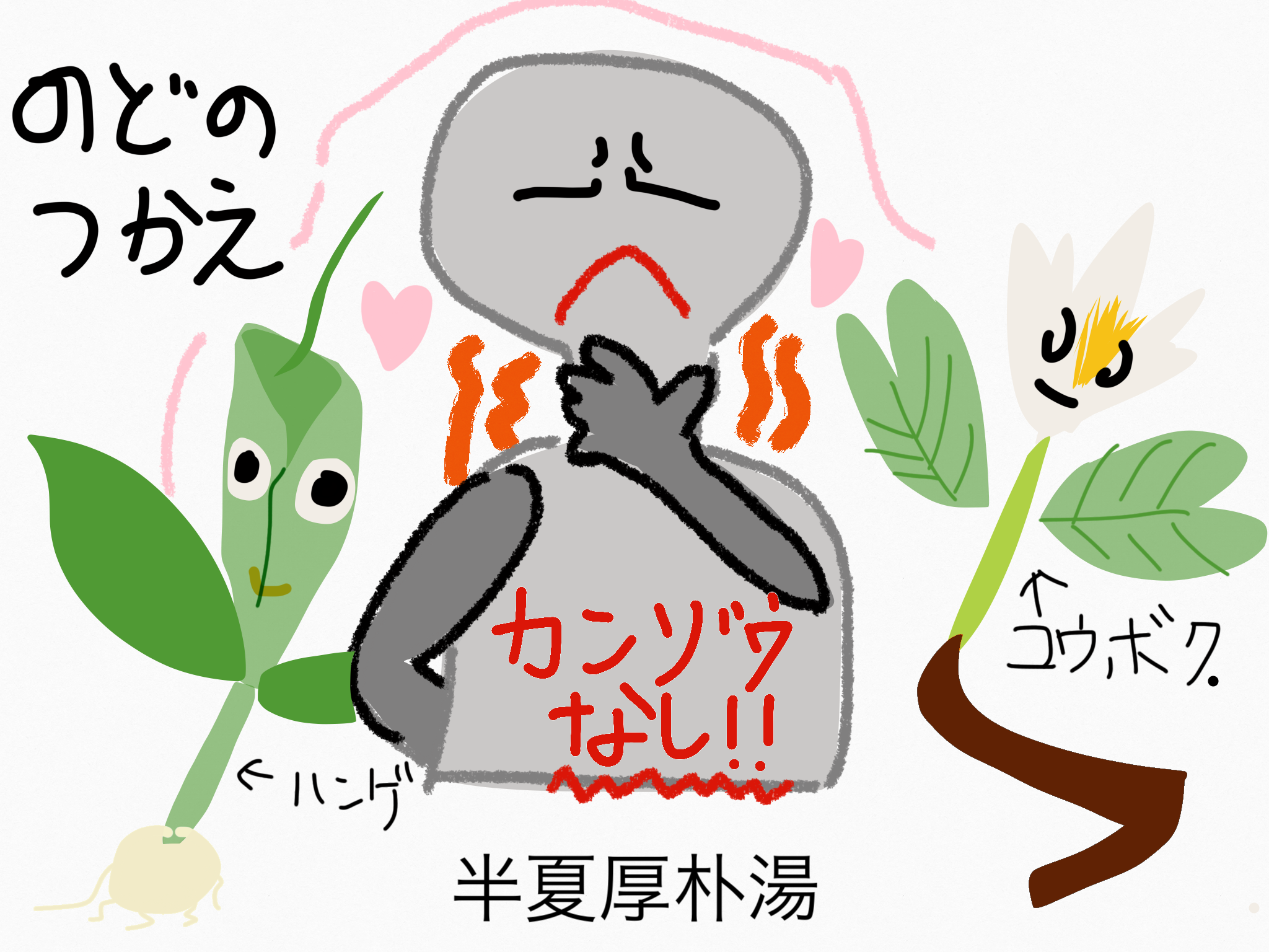 半夏厚朴湯(はんげこうぼくとう)[咳・かぜ]【漢方の覚え方】