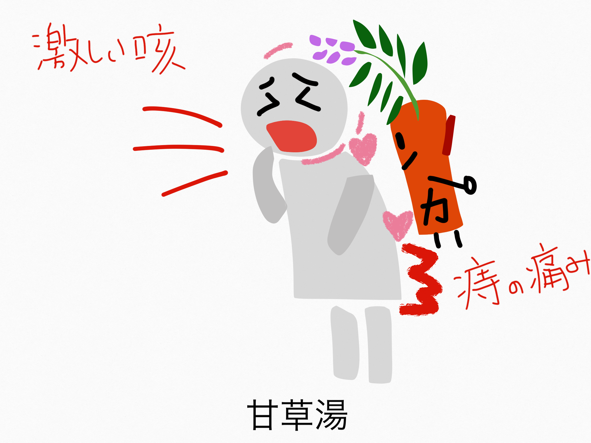 甘草湯(かんぞうとう)[咳]【漢方の覚え方】