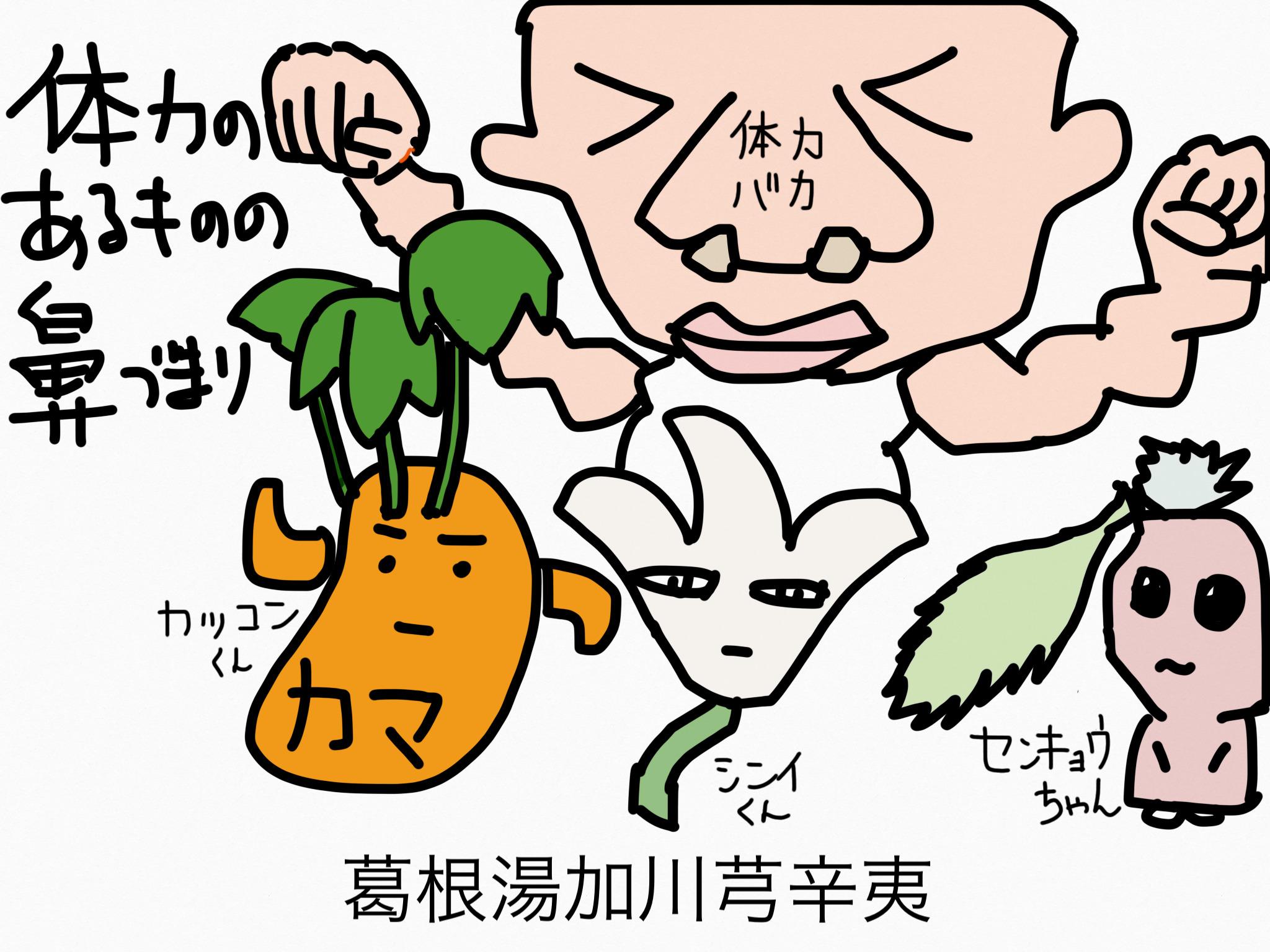 葛根湯加川芎辛夷(かっこんとうかせんきゅうしんい)[鼻の症状]【漢方の覚え方】