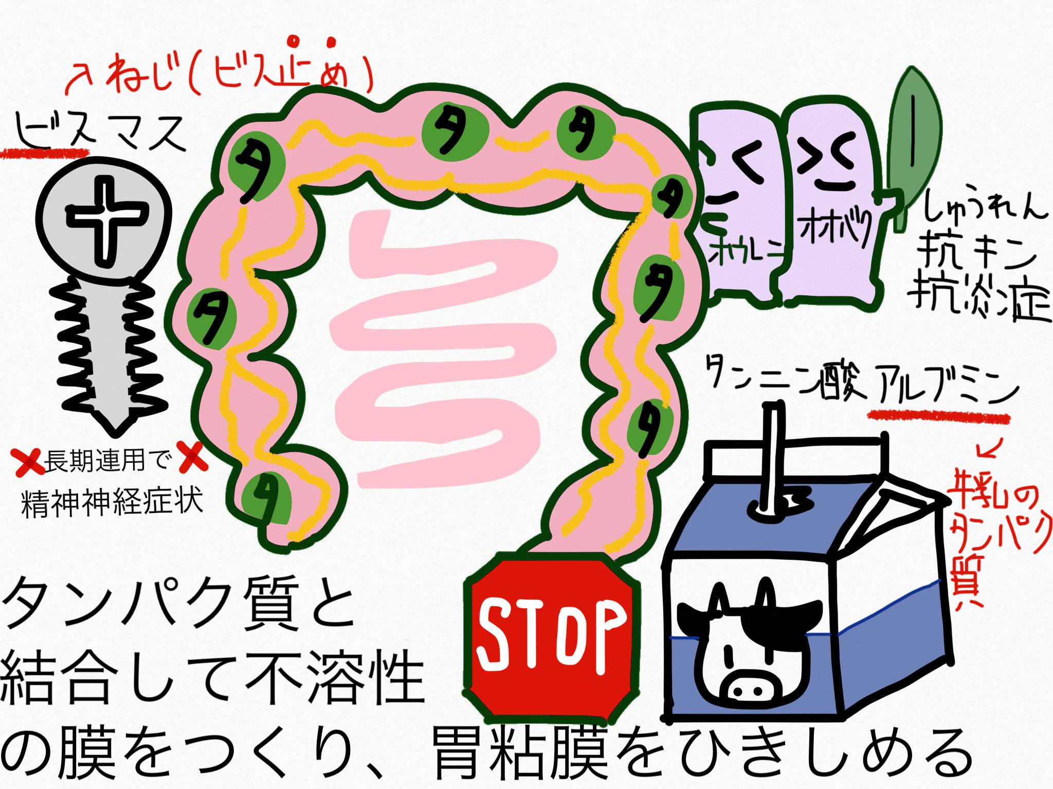 腸の薬の成分まとめ・覚え方②止瀉成分(収斂)