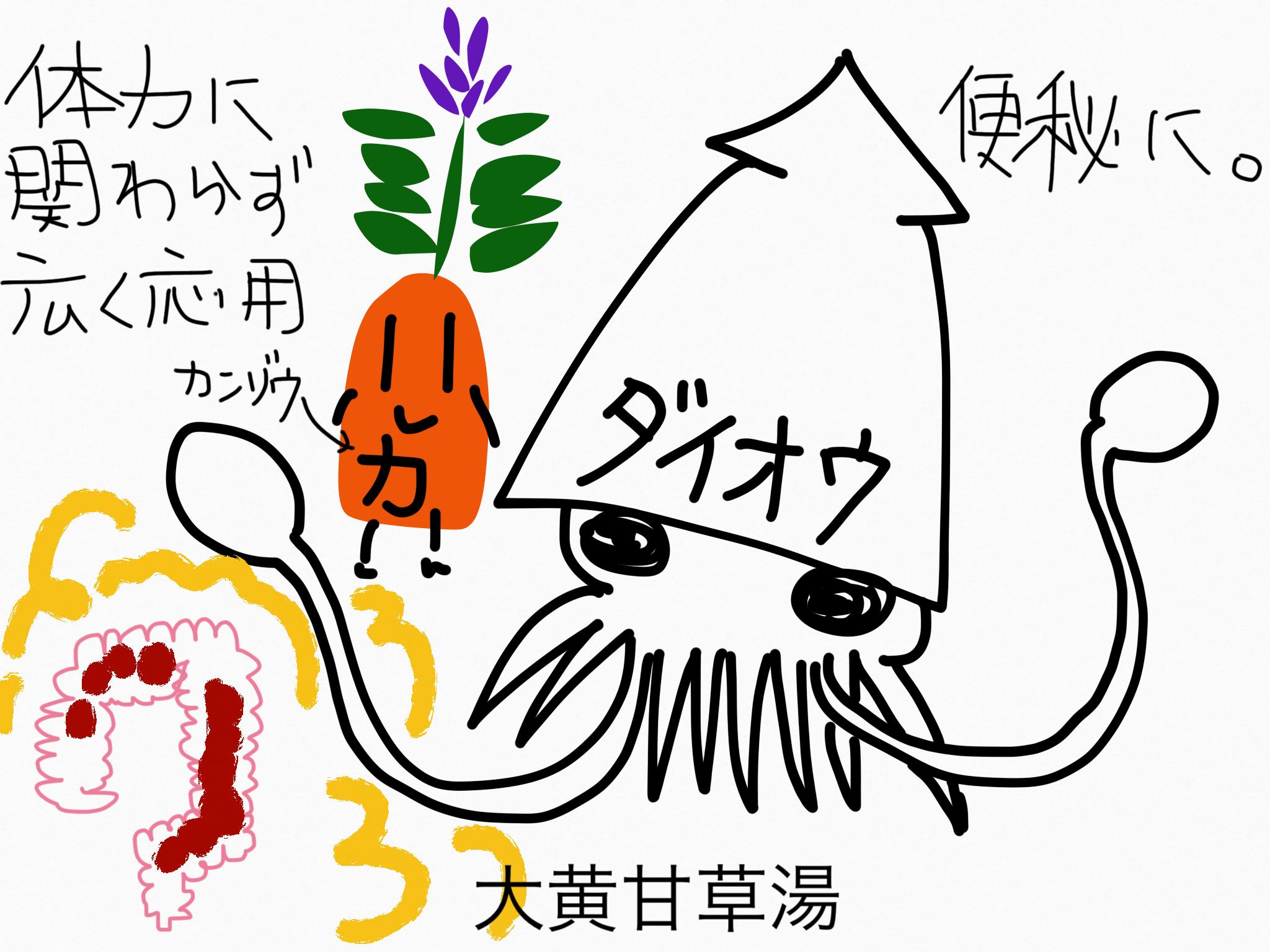 大黄甘草湯(だいおうかんぞうとう)[腸の不調]【漢方の覚え方】