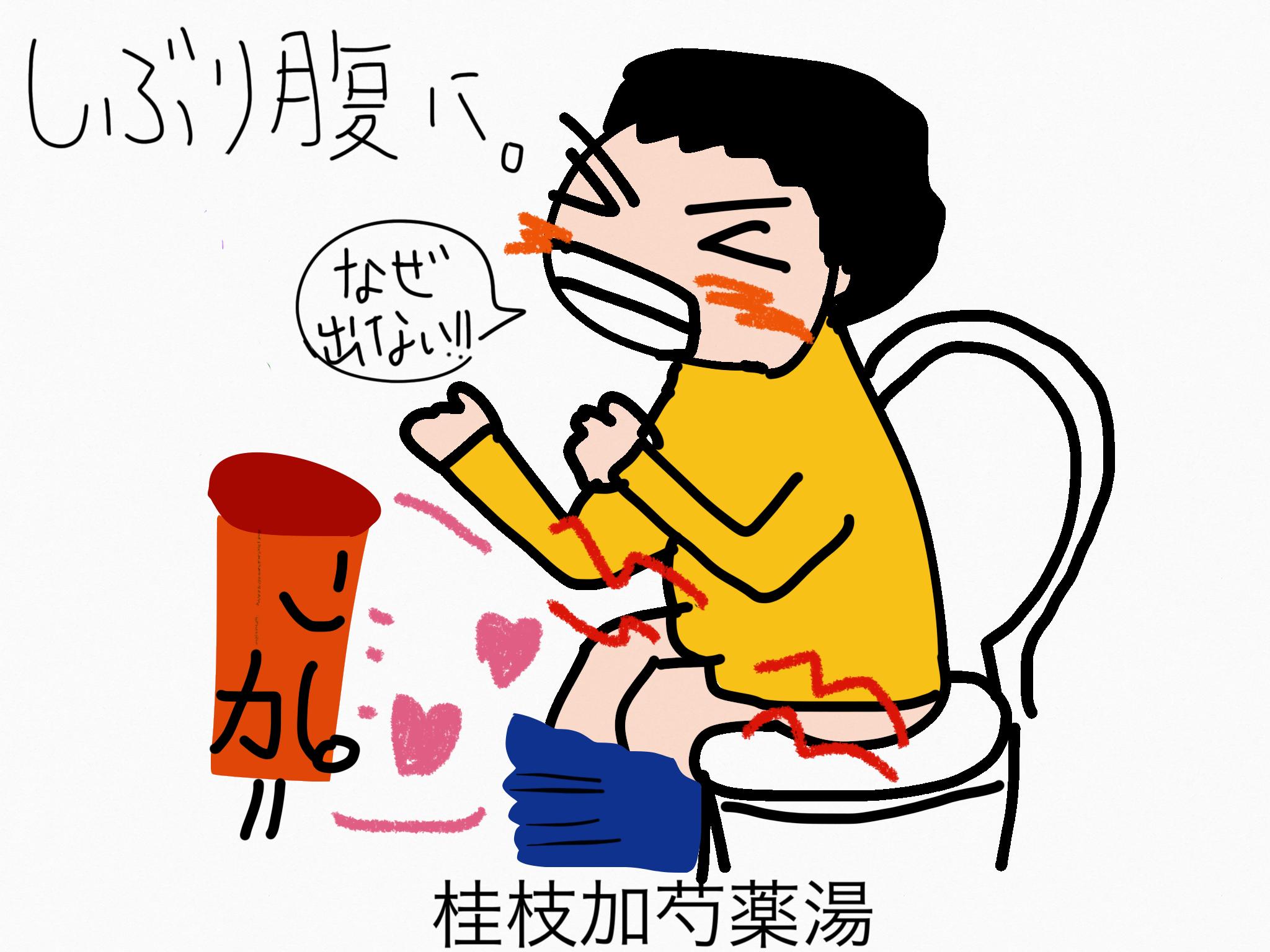 桂枝加芍薬湯(けいしかしゃくやくとう)[腸の不調]【漢方の覚え方】