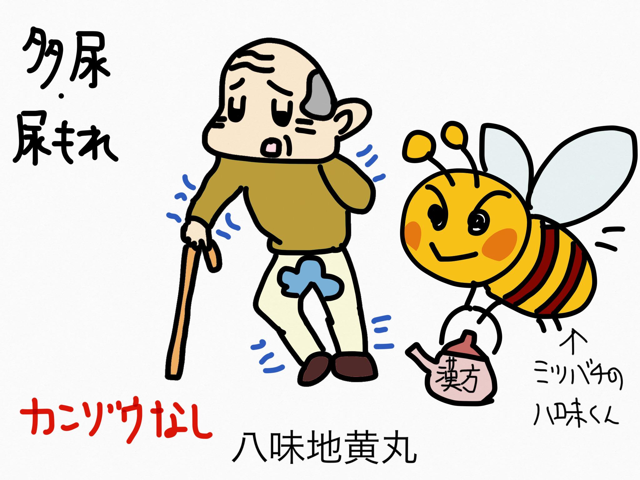 八味地黄丸(はちみじおうがん)[排尿異常]【漢方の覚え方】