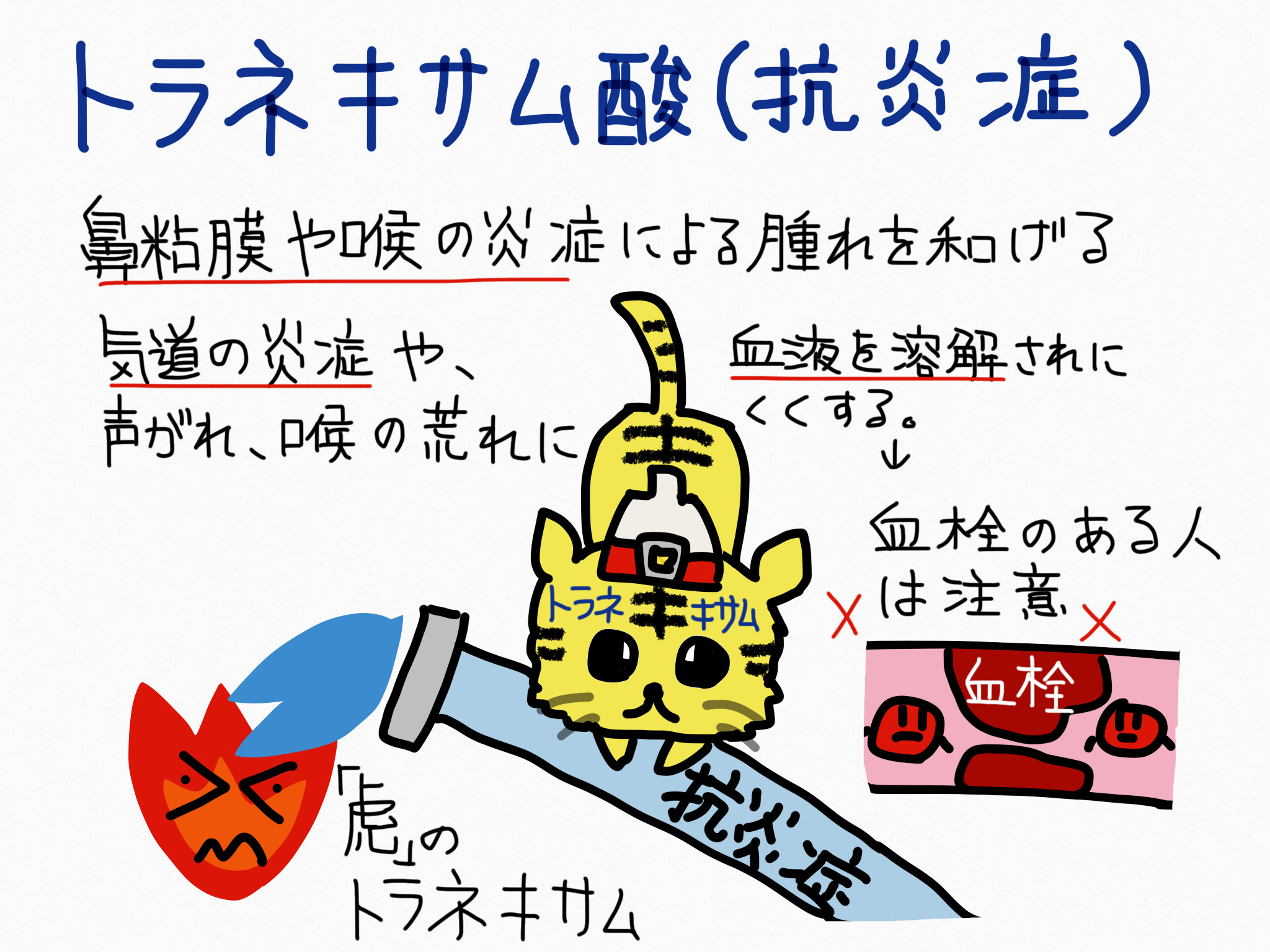 トラネキサム酸・抗炎症成分の覚え方